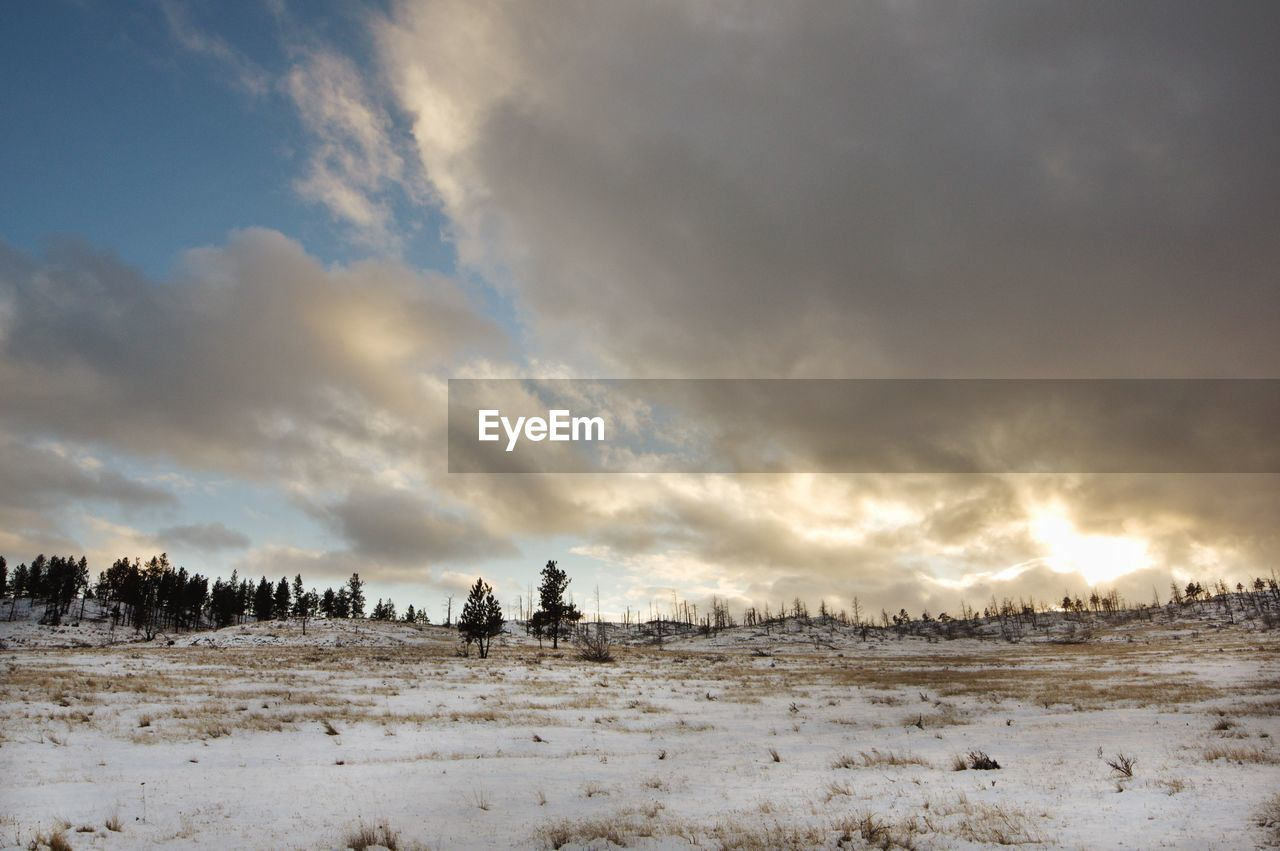 sky, cloud - sky, beauty in nature, scenics - nature, snow, cold temperature, nature, winter, environment, tranquility, land, non-urban scene, tranquil scene, landscape, field, sunset, tree, no people, outdoors