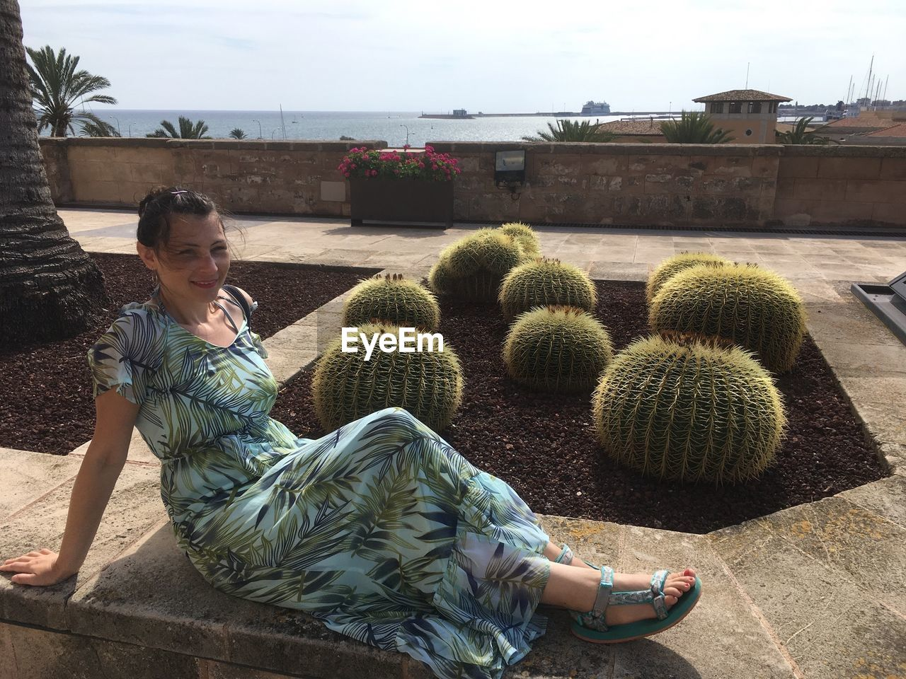Woman Sitting By Cacti On Sunny Day
