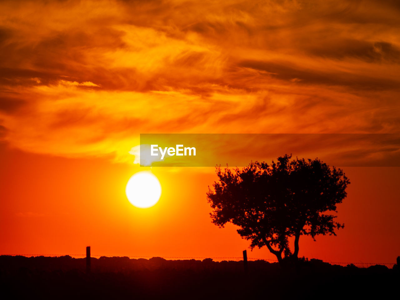 sunset, orange color, sky, silhouette, beauty in nature, scenics - nature, sun, tree, tranquility, tranquil scene, plant, idyllic, nature, cloud - sky, environment, no people, non-urban scene, sunlight, landscape, outdoors, romantic sky