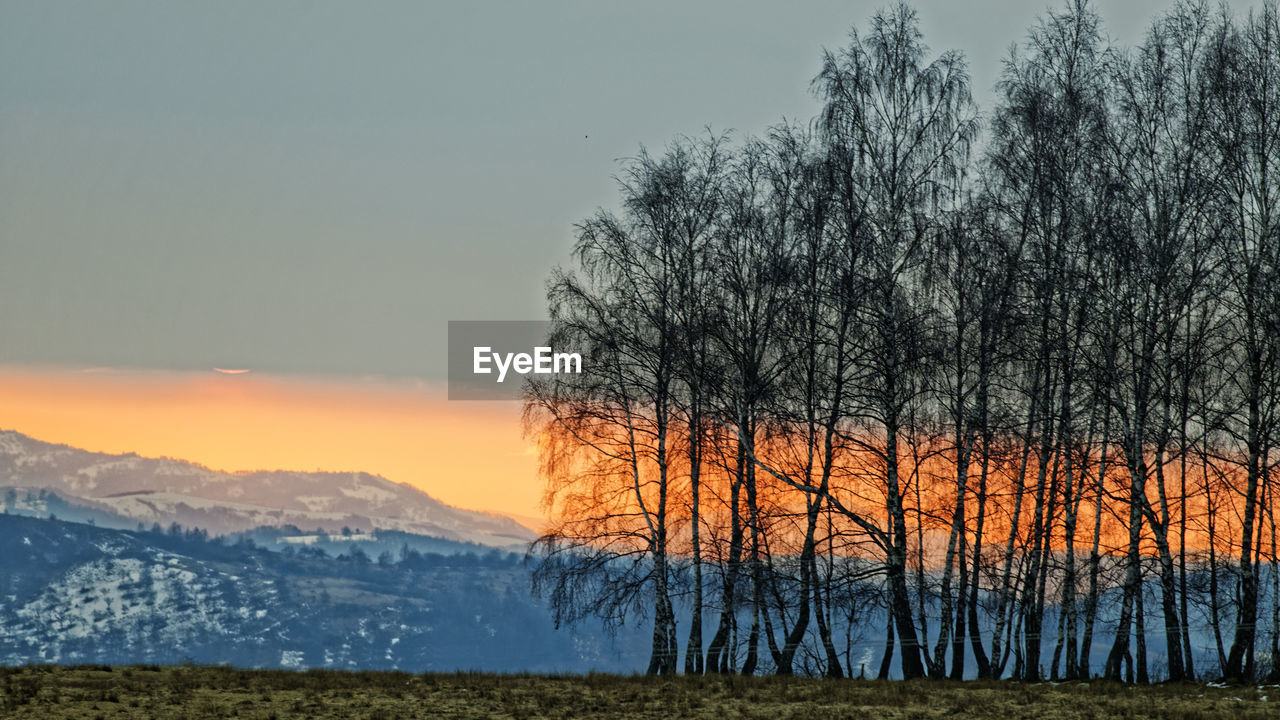 beauty in nature, tranquility, scenics - nature, tree, tranquil scene, sky, plant, sunset, non-urban scene, no people, nature, environment, bare tree, orange color, mountain, winter, idyllic, landscape, land, outdoors