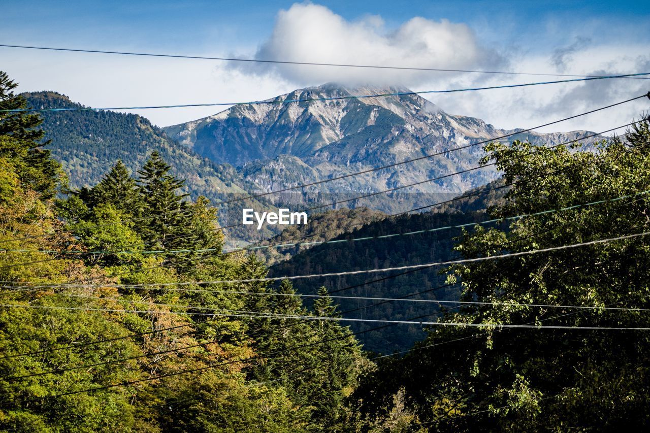mountain, sky, beauty in nature, scenics - nature, tree, nature, plant, mountain range, cloud - sky, tranquil scene, no people, environment, day, cable, tranquility, non-urban scene, land, fuel and power generation, idyllic, growth, outdoors, electricity, snowcapped mountain, mountain peak, power supply