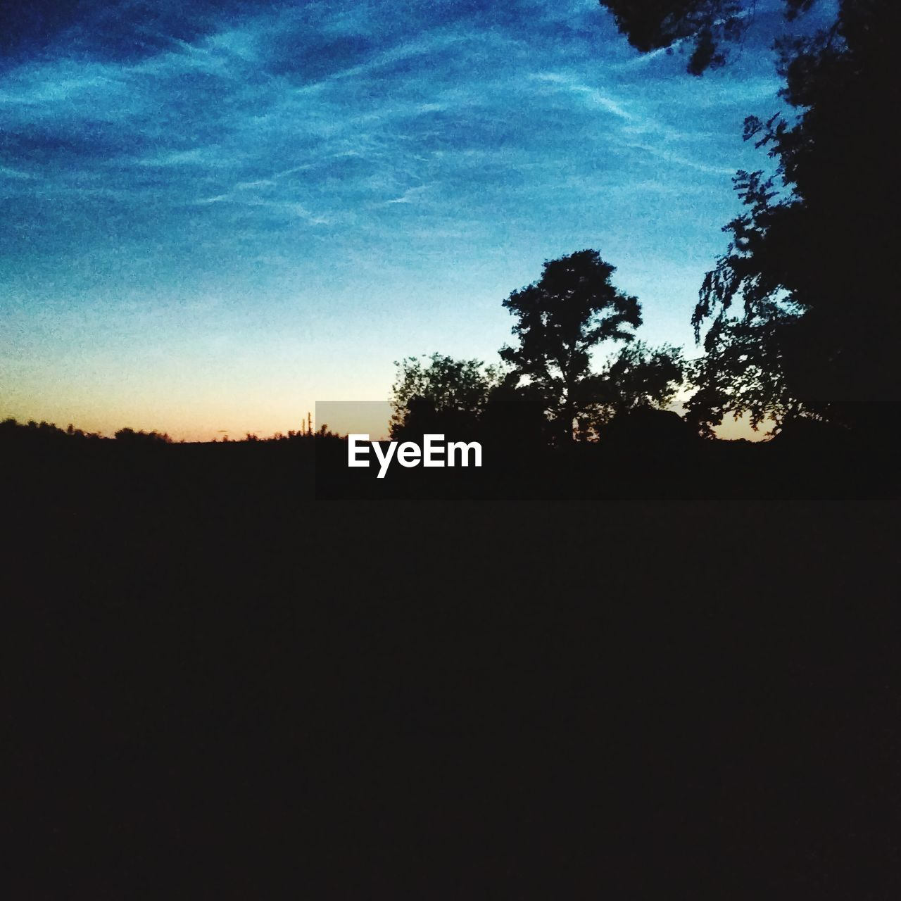 silhouette, dark, nature, tree, sky, landscape, no people, outdoors, day