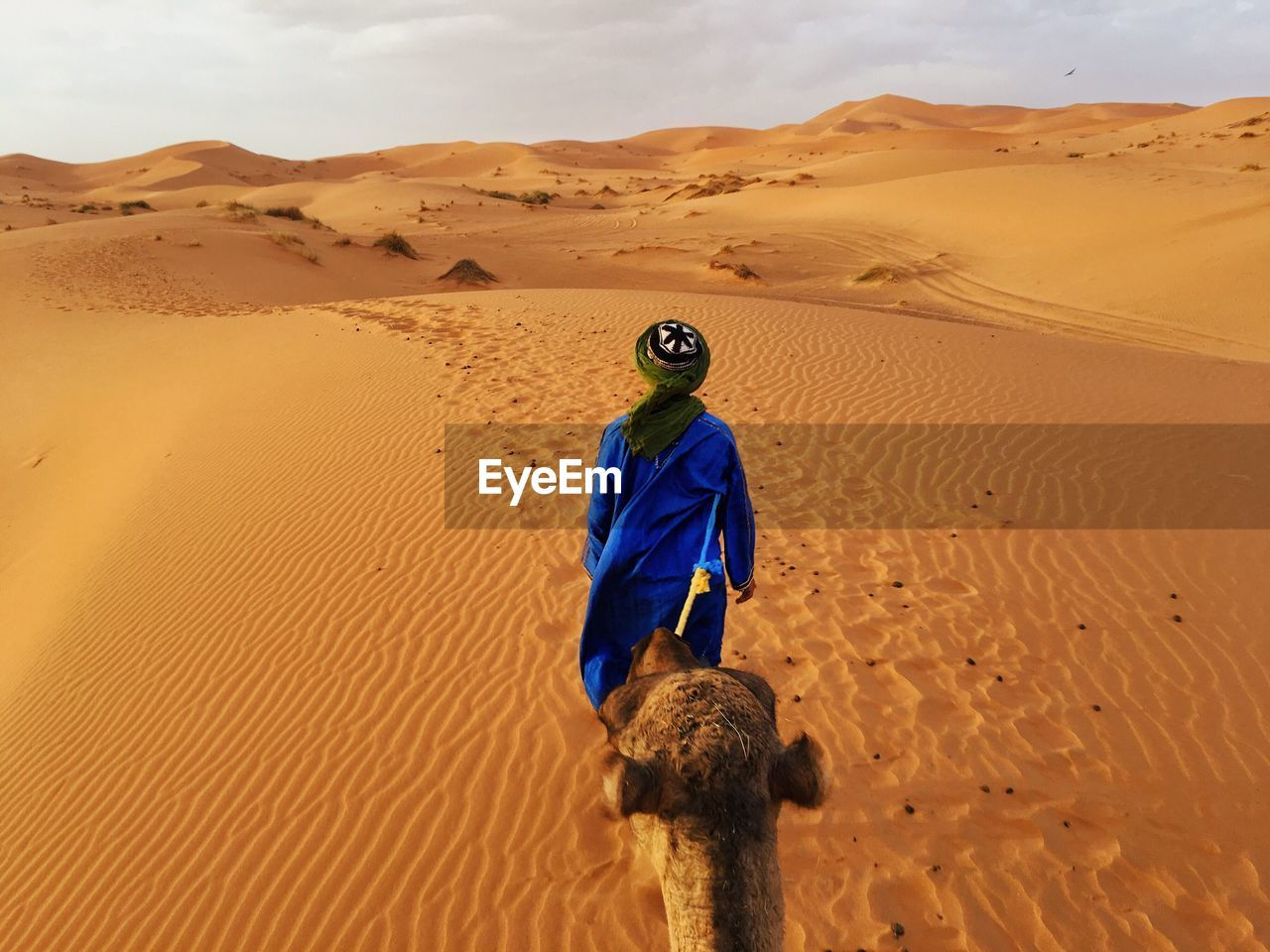 Rear View Of Man With Camel Walking On Desert