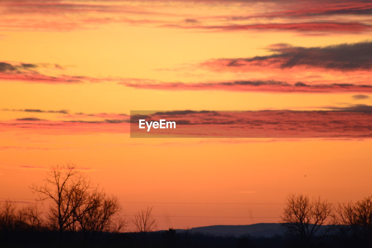 sunset, orange color, silhouette, beauty in nature, scenics, tranquil scene, nature, sky, tranquility, tree, no people, bare tree, outdoors, sun, cloud - sky, landscape