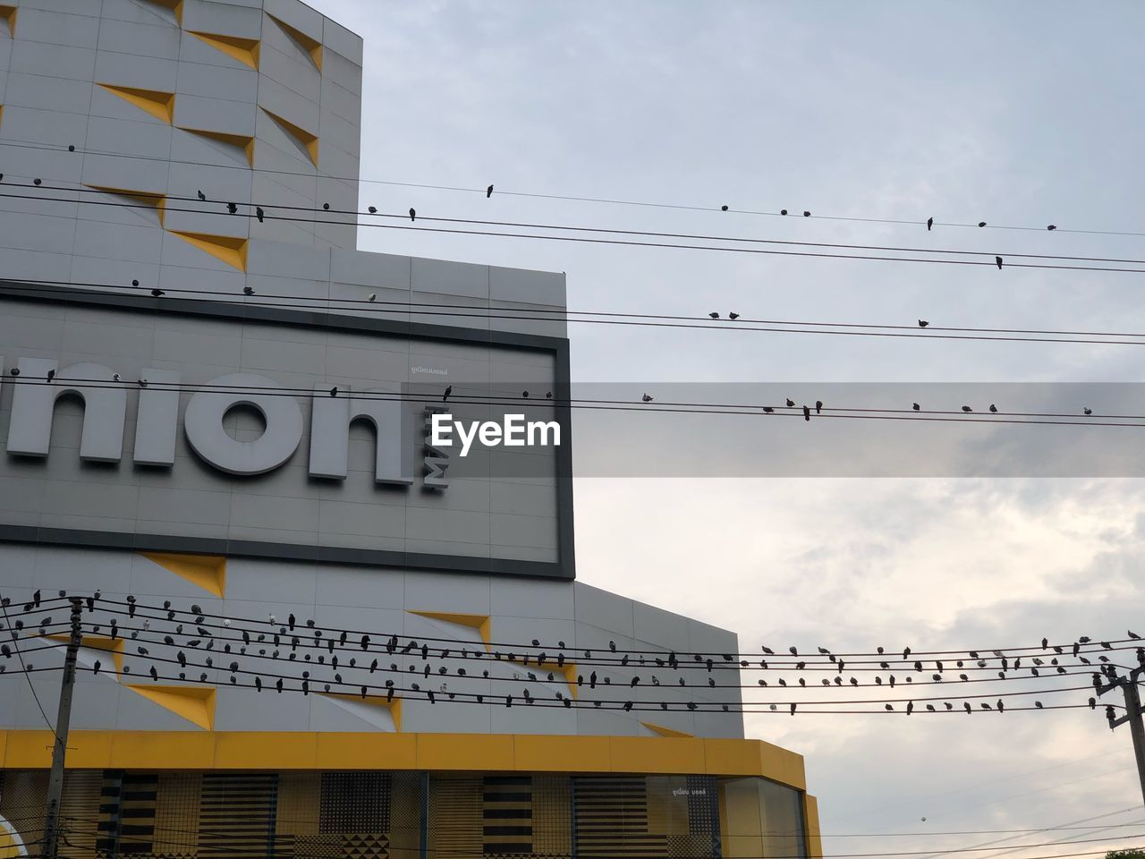 architecture, built structure, building exterior, sky, low angle view, cloud - sky, text, nature, no people, building, communication, western script, day, cable, outdoors, sign, city, bird, information, vertebrate