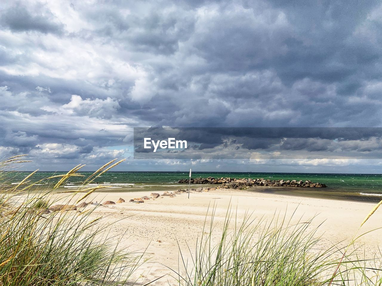cloud - sky, sky, beauty in nature, land, water, beach, scenics - nature, plant, tranquility, tranquil scene, sea, sand, nature, grass, day, marram grass, no people, growth, environment, outdoors, horizon over water