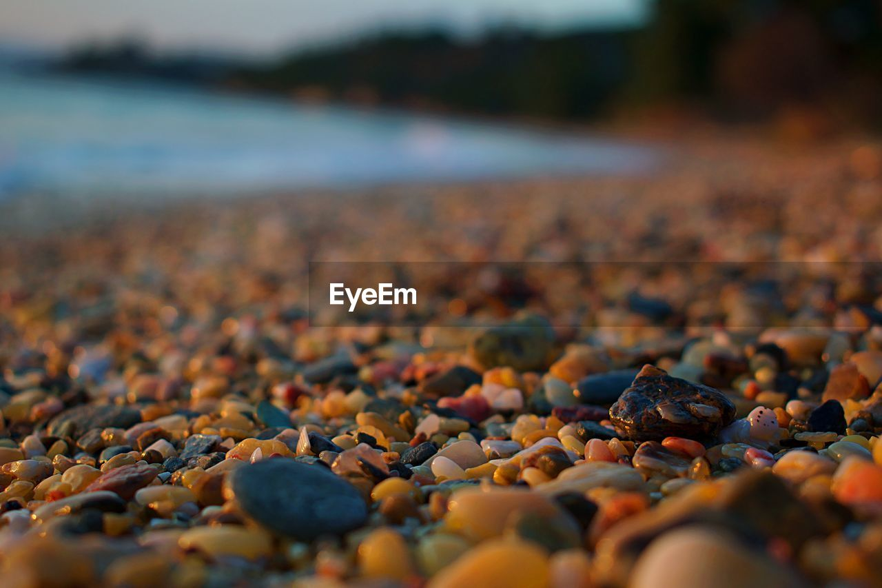 beach, water, pebble, stone, stone - object, selective focus, rock, solid, land, day, nature, beauty in nature, no people, rock - object, tranquility, surface level, sea, outdoors, tranquil scene