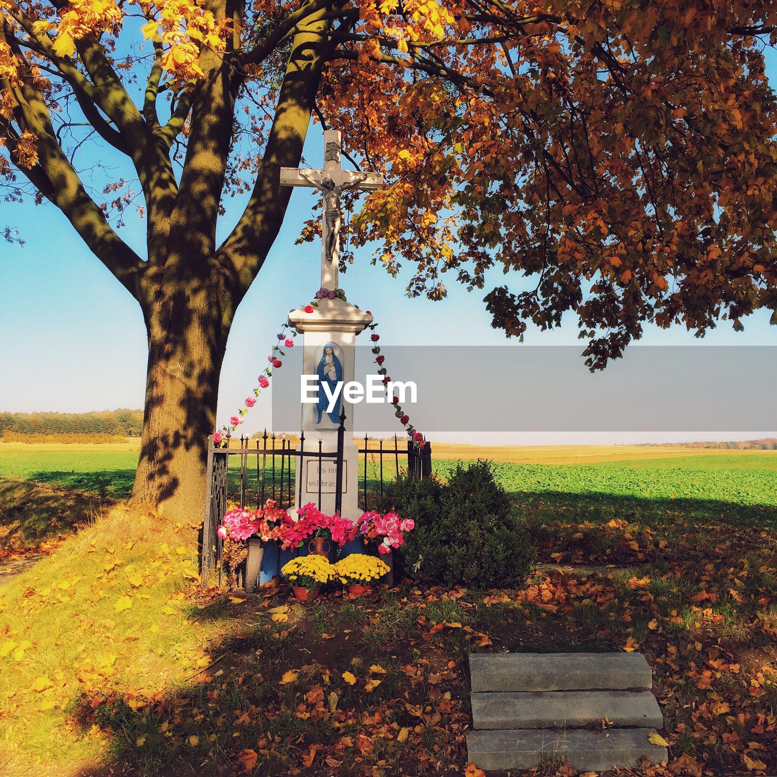 Cross by tree on field against sky