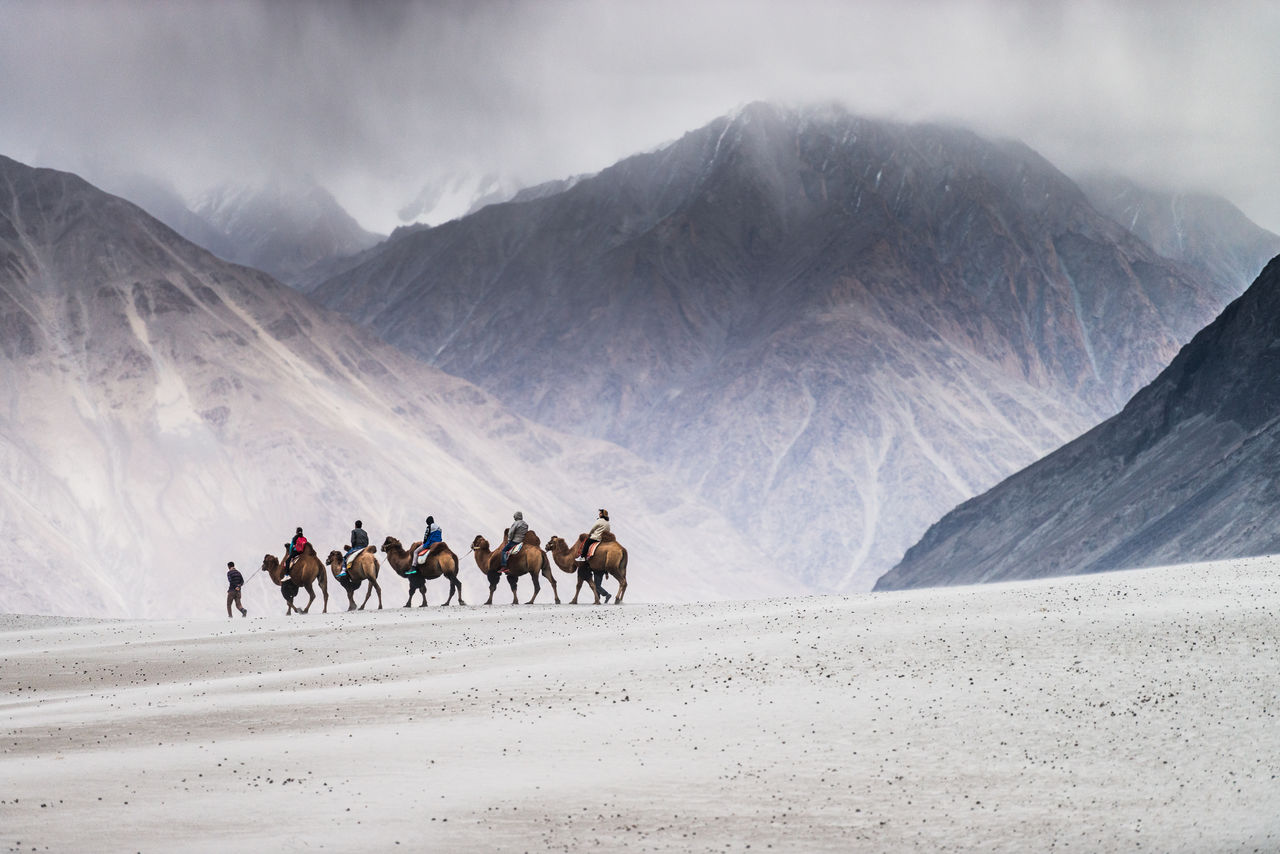 People Riding On Camels Against Rocky Mountains In Desert