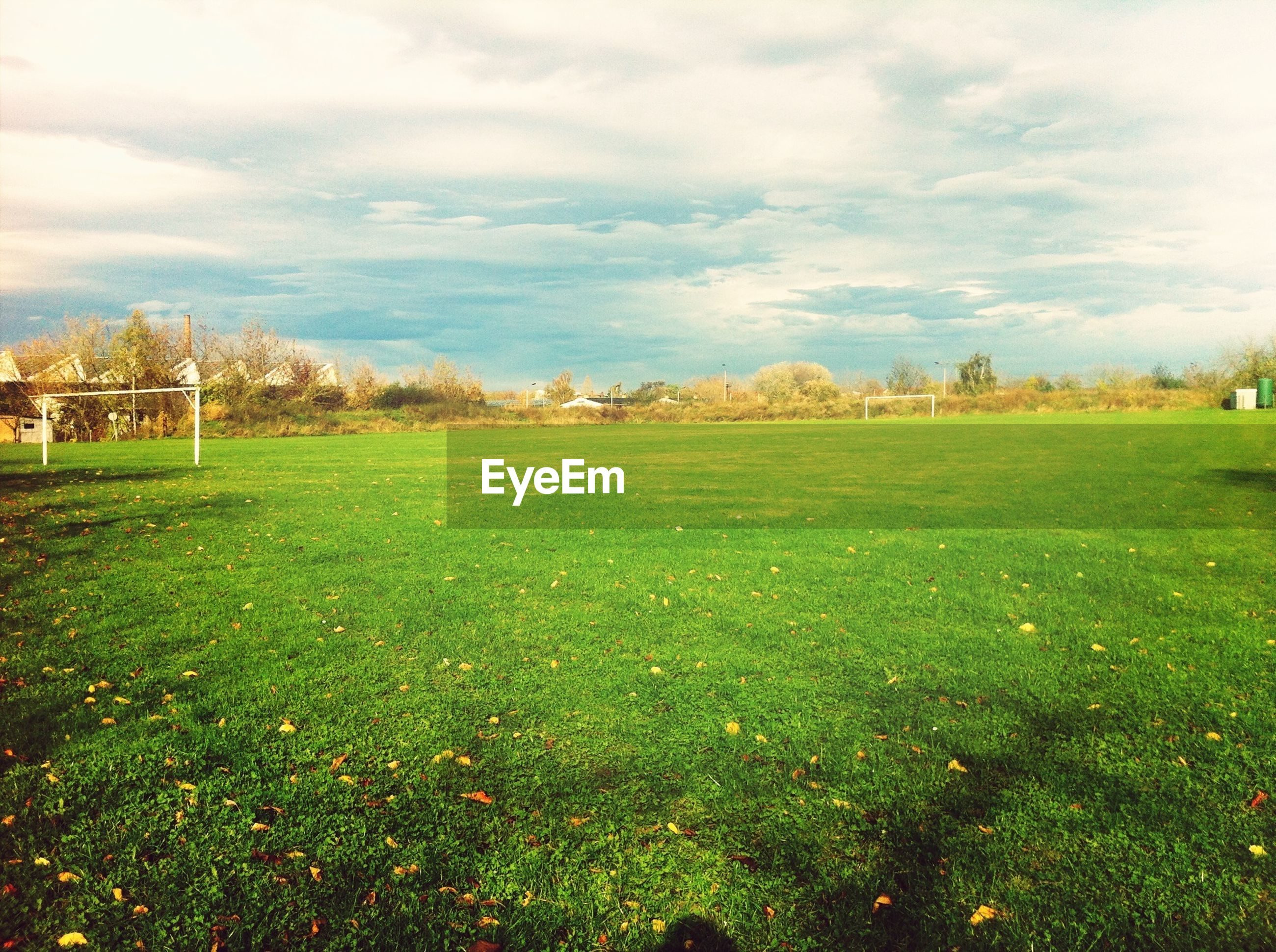 grass, sky, field, green color, tranquil scene, grassy, tranquility, landscape, growth, cloud - sky, beauty in nature, nature, scenics, tree, cloud, cloudy, plant, day, outdoors, rural scene