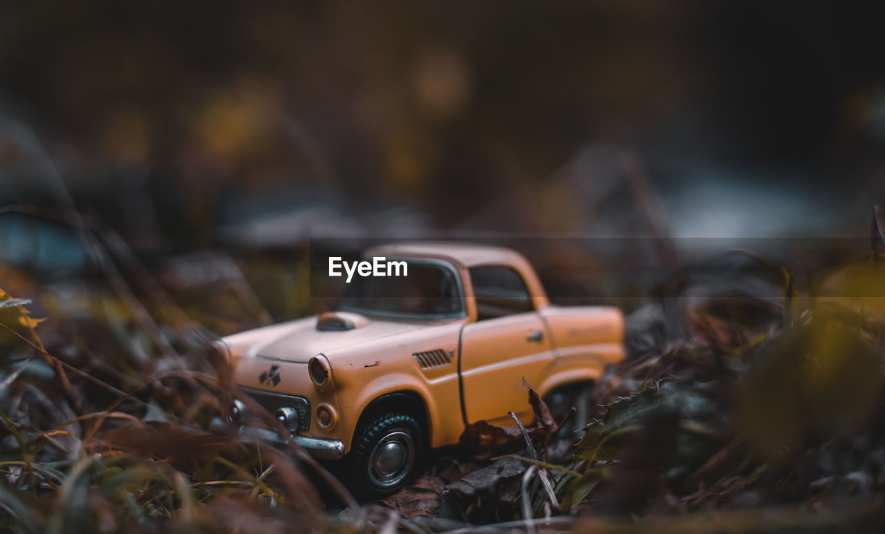car, motor vehicle, mode of transportation, selective focus, transportation, land vehicle, no people, toy car, day, toy, abandoned, damaged, outdoors, close-up, obsolete, focus on foreground, nature, field, retro styled, small