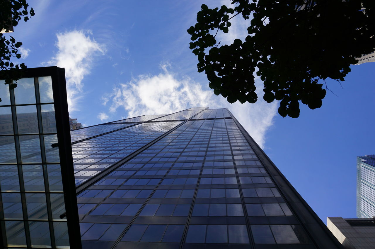 architecture, built structure, sky, low angle view, cloud - sky, building exterior, nature, tree, building, city, no people, tall - high, reflection, modern, office, tower, plant, day, office building exterior, glass - material, outdoors, skyscraper, glass, directly below