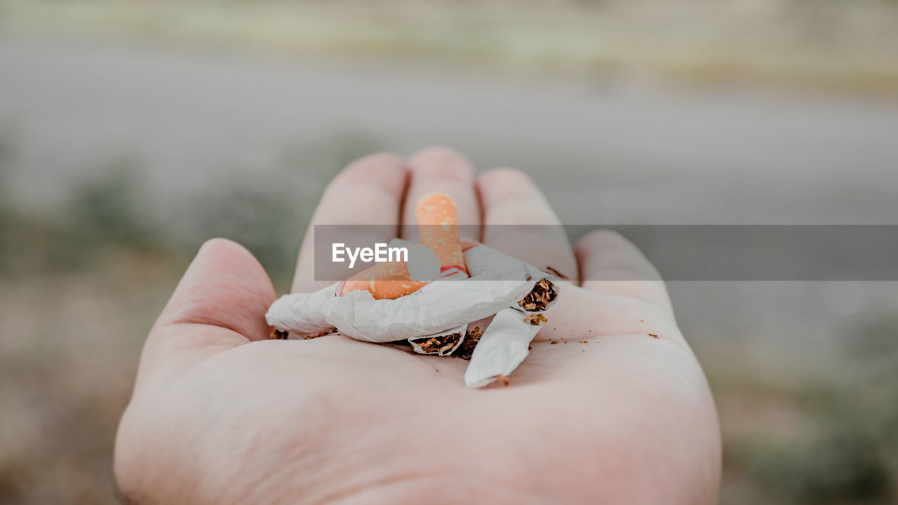 human hand, hand, one person, human body part, holding, focus on foreground, animal wildlife, animal, animal themes, animals in the wild, day, crustacean, one animal, unrecognizable person, close-up, body part, real people, crab, hermit crab, finger, outdoors, marine, human limb