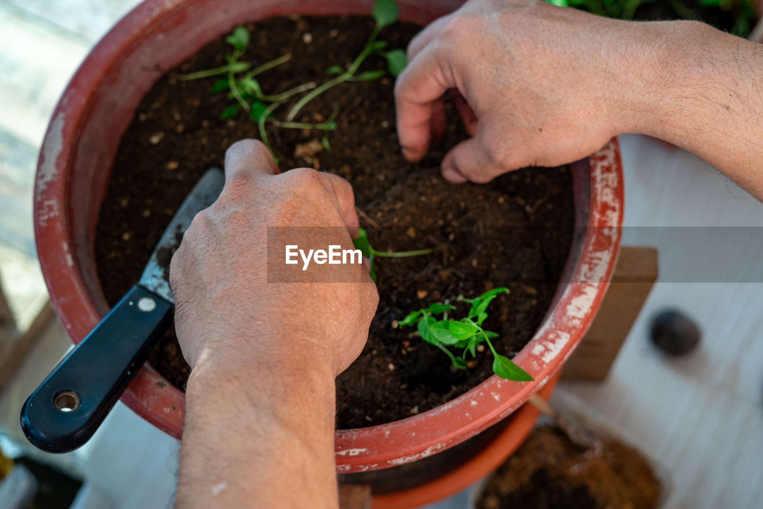 HIGH ANGLE VIEW OF PERSON HAND HOLDING POT