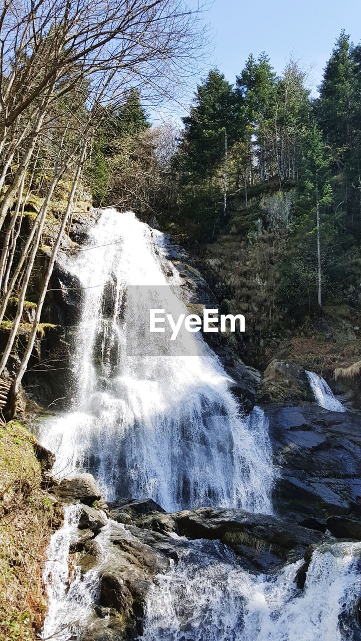 tree, motion, plant, water, beauty in nature, flowing water, waterfall, scenics - nature, forest, nature, blurred motion, long exposure, day, rock, land, no people, solid, rock - object, flowing, outdoors, power in nature, falling water