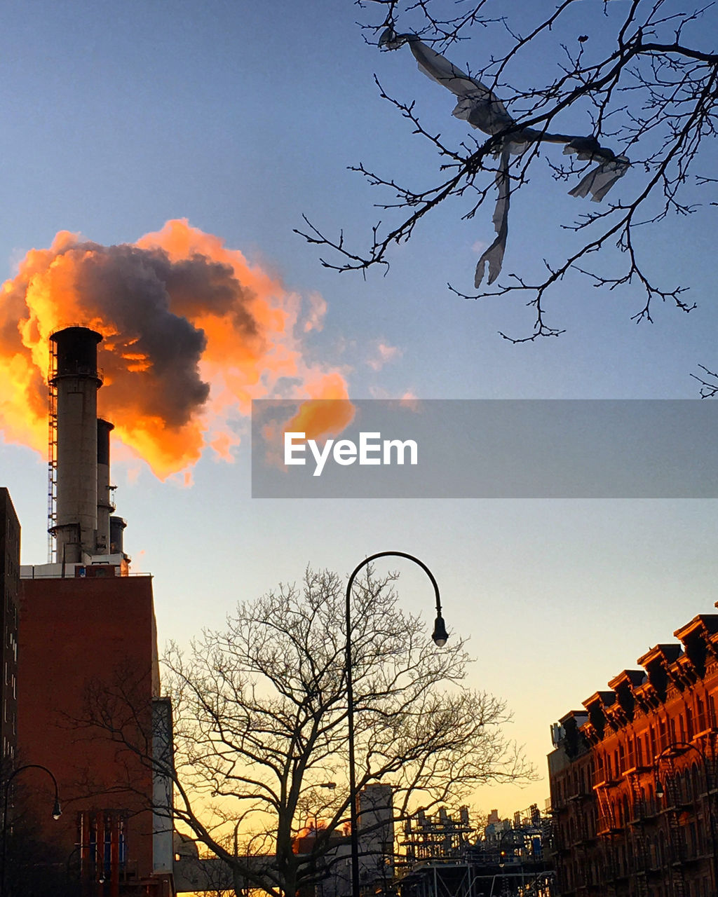 built structure, building exterior, sky, architecture, bare tree, no people, outdoors, tree, day, smoke stack, city