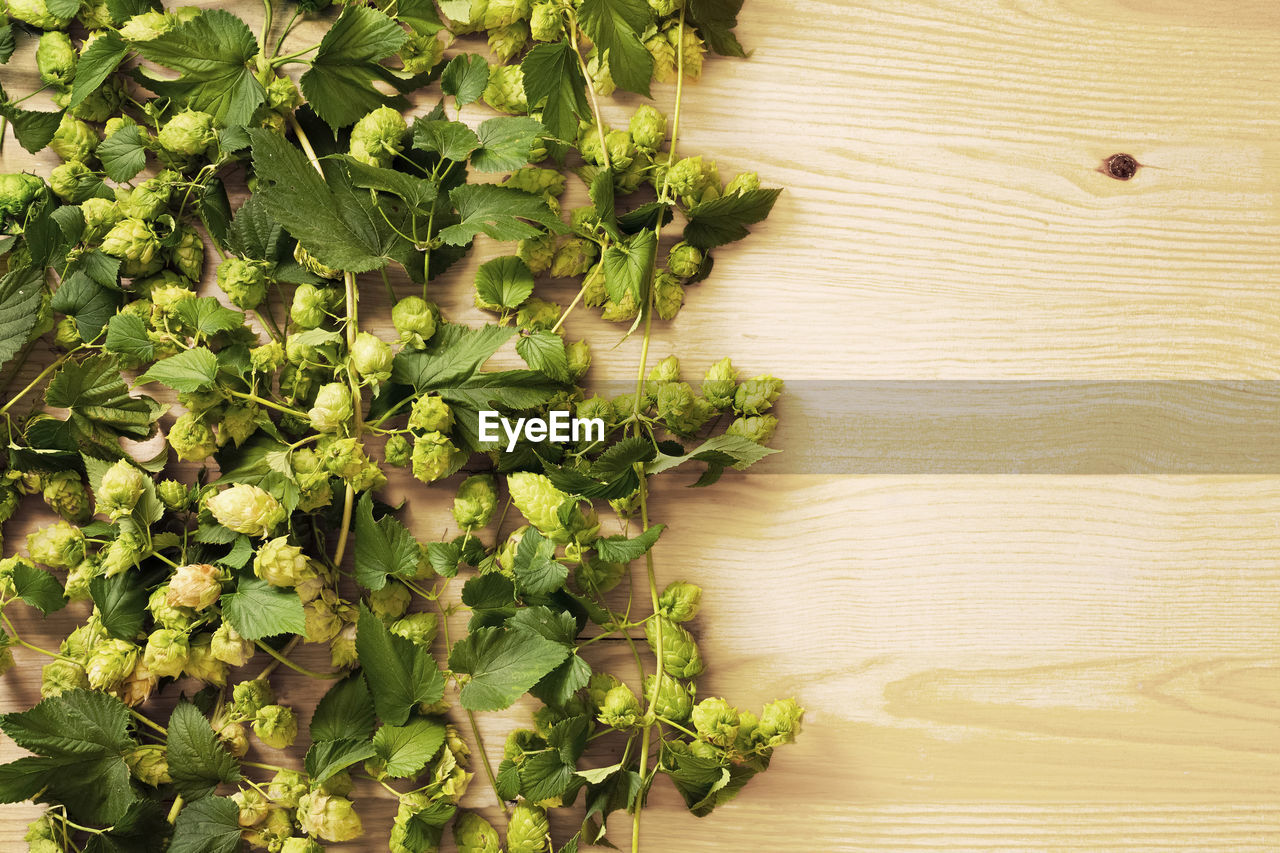 High Angle View Of Hops On Table