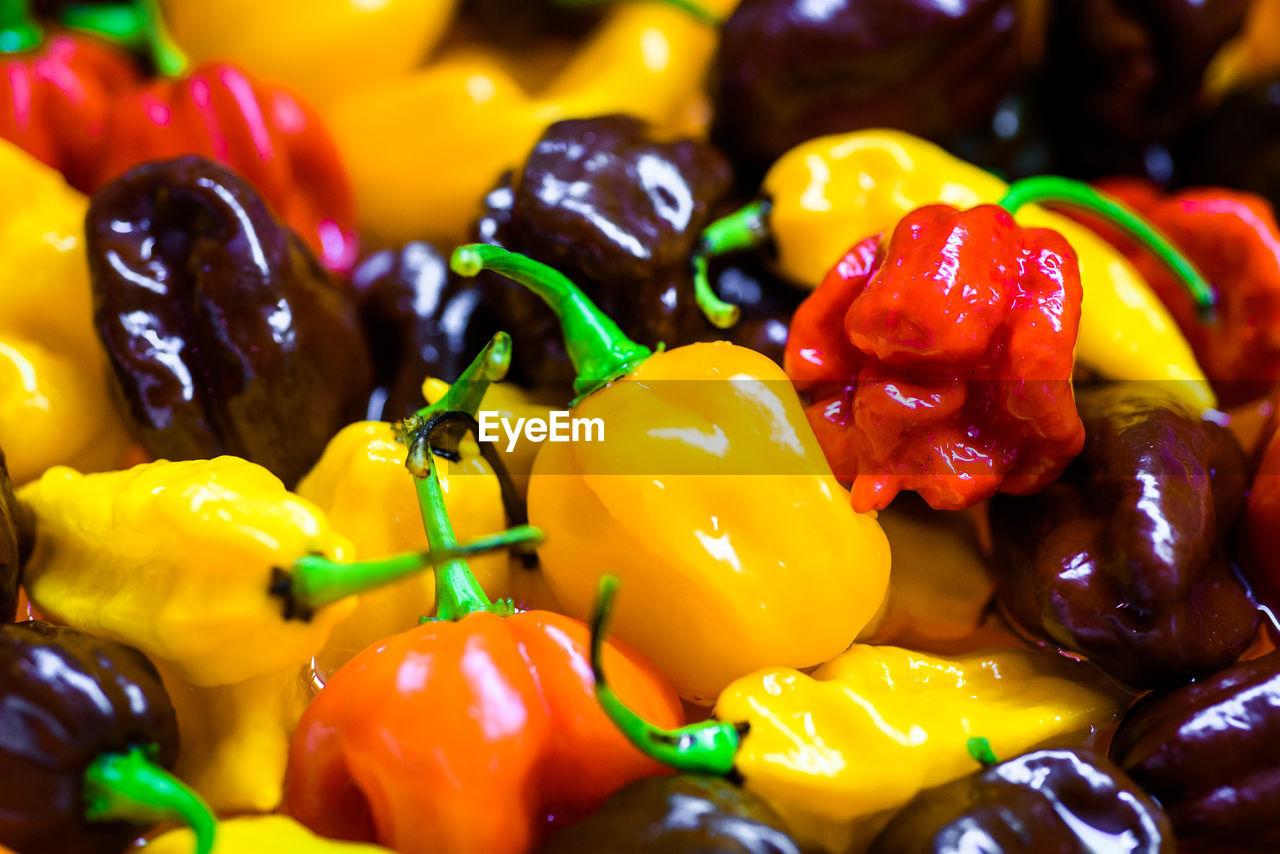 Full frame shot of multi colored bell peppers