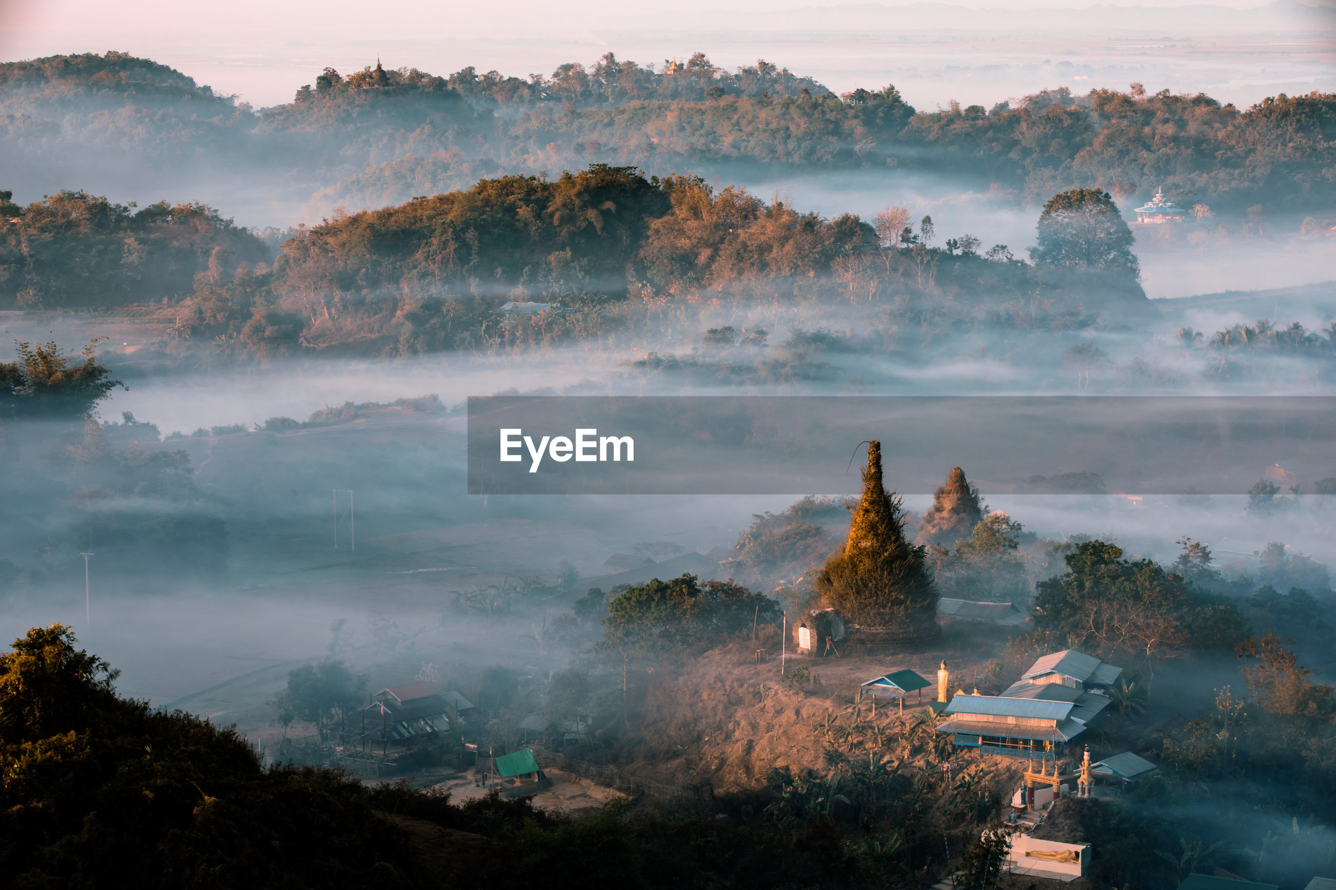 HIGH ANGLE VIEW OF TREES AND BUILDINGS IN FOGGY WEATHER