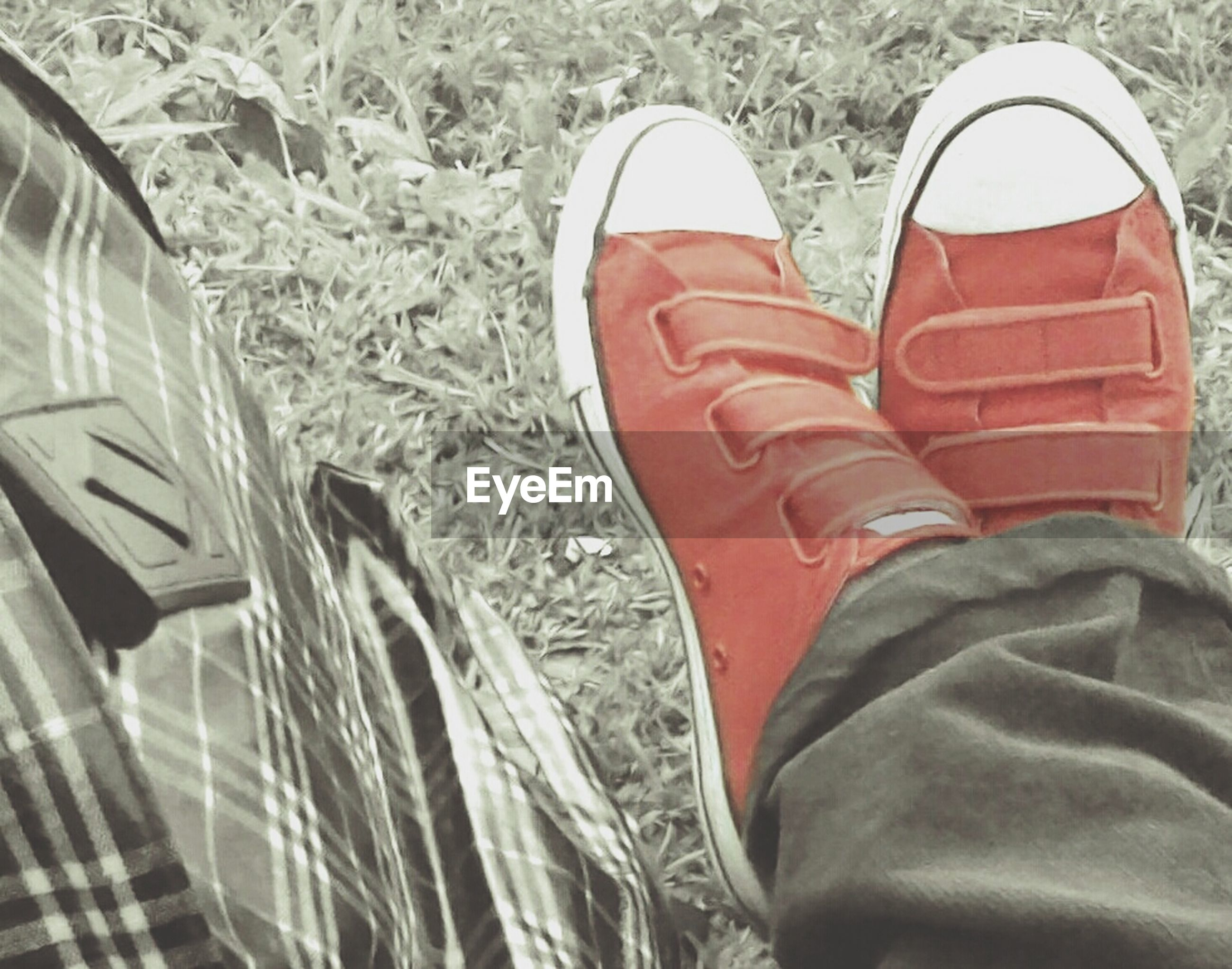 low section, shoe, person, footwear, lifestyles, personal perspective, standing, high angle view, men, human foot, canvas shoe, leisure activity, field, pair, red, unrecognizable person, grass
