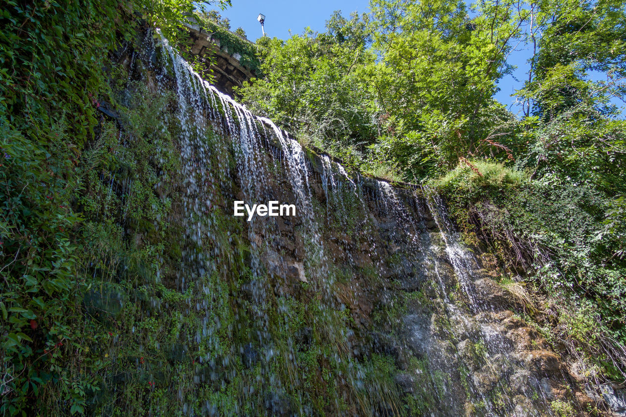 plant, tree, nature, beauty in nature, growth, low angle view, day, tranquility, scenics - nature, no people, rock, land, mountain, tranquil scene, forest, non-urban scene, sky, green color, outdoors, environment, formation, flowing water