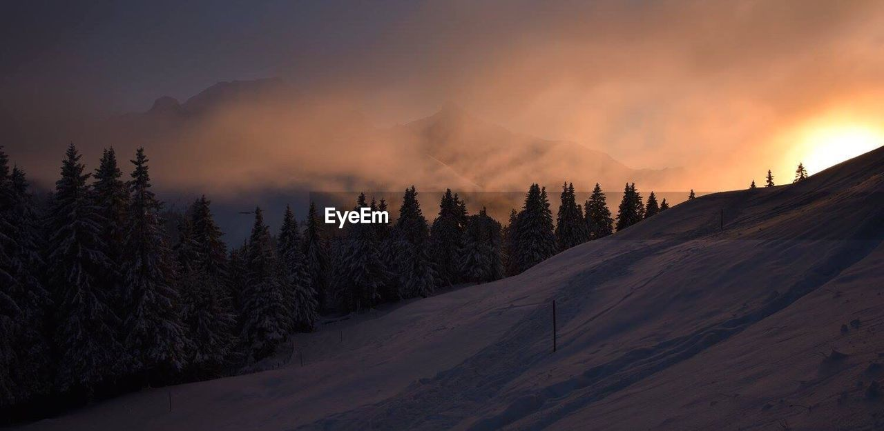 cloud - sky, nature, cold temperature, dramatic sky, mountain, snow, landscape, winter, sunset, scenics, outdoors, beauty in nature, sky, tree, no people, forest, sun, pine tree, tranquil scene, sunlight, tranquility, travel destinations, fog
