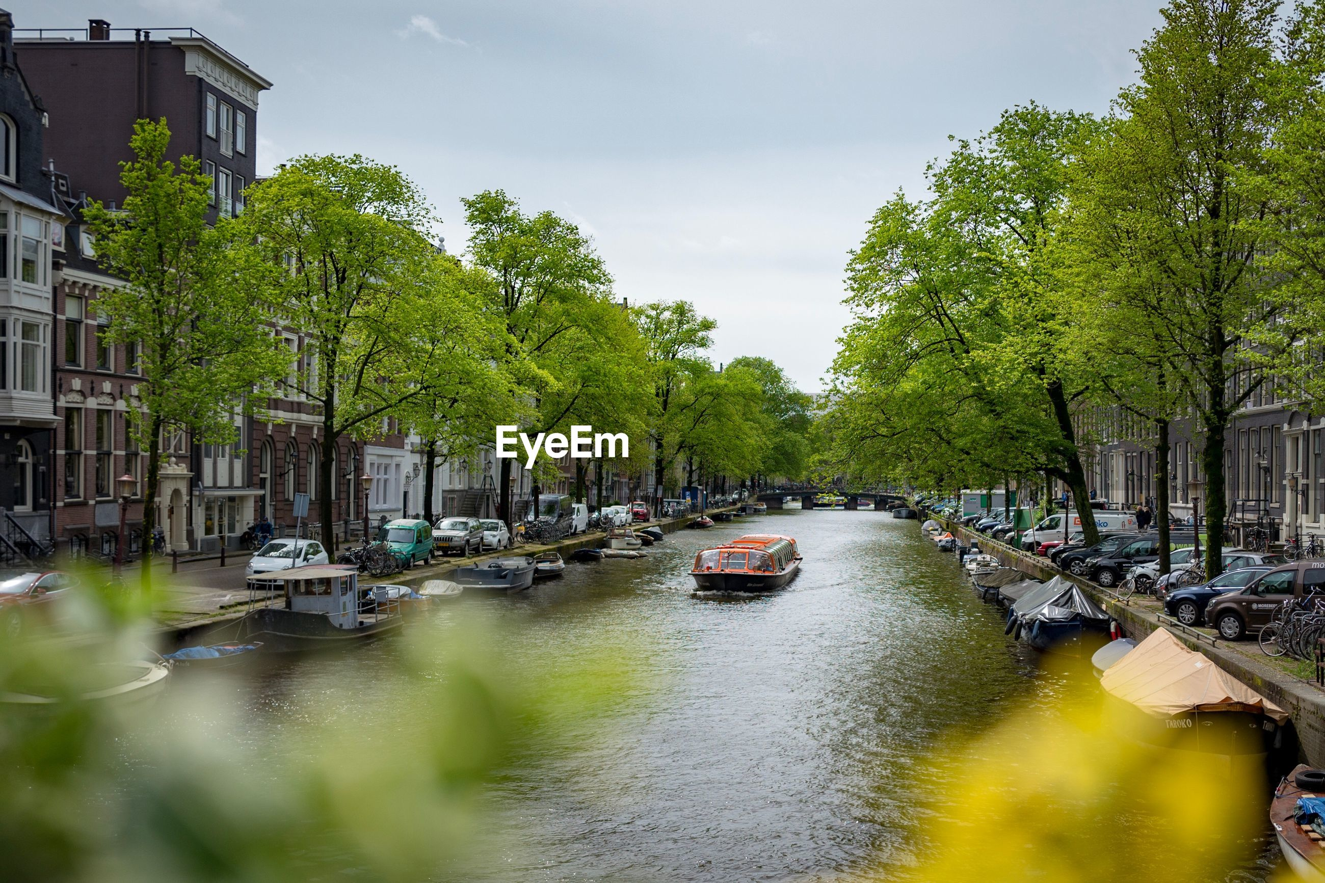 BOATS IN CANAL ALONG TREES AND BUILDINGS