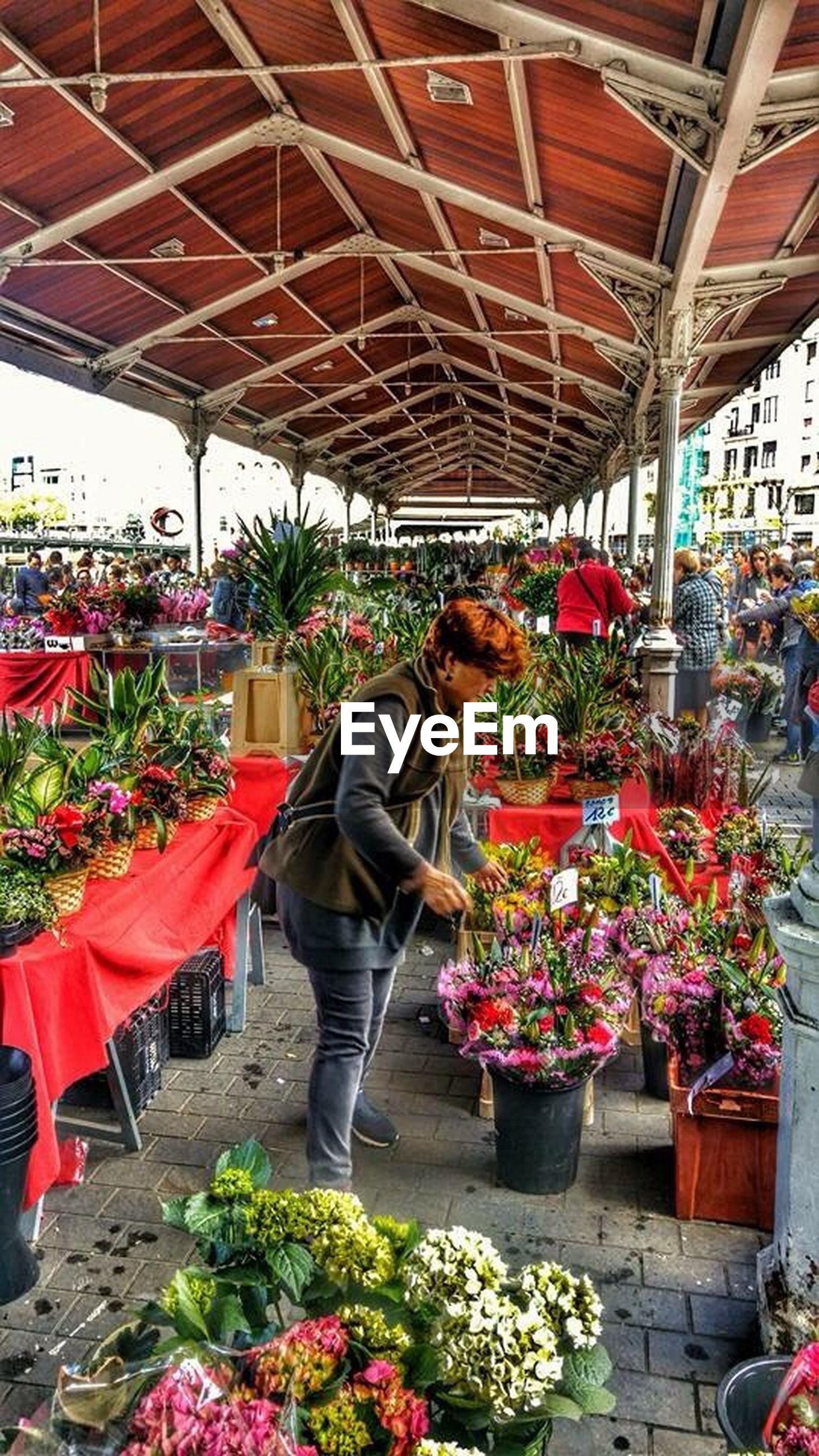 flower, lifestyles, person, men, leisure activity, rear view, casual clothing, freshness, standing, full length, retail, plant, sitting, bouquet, for sale, potted plant, market, market stall