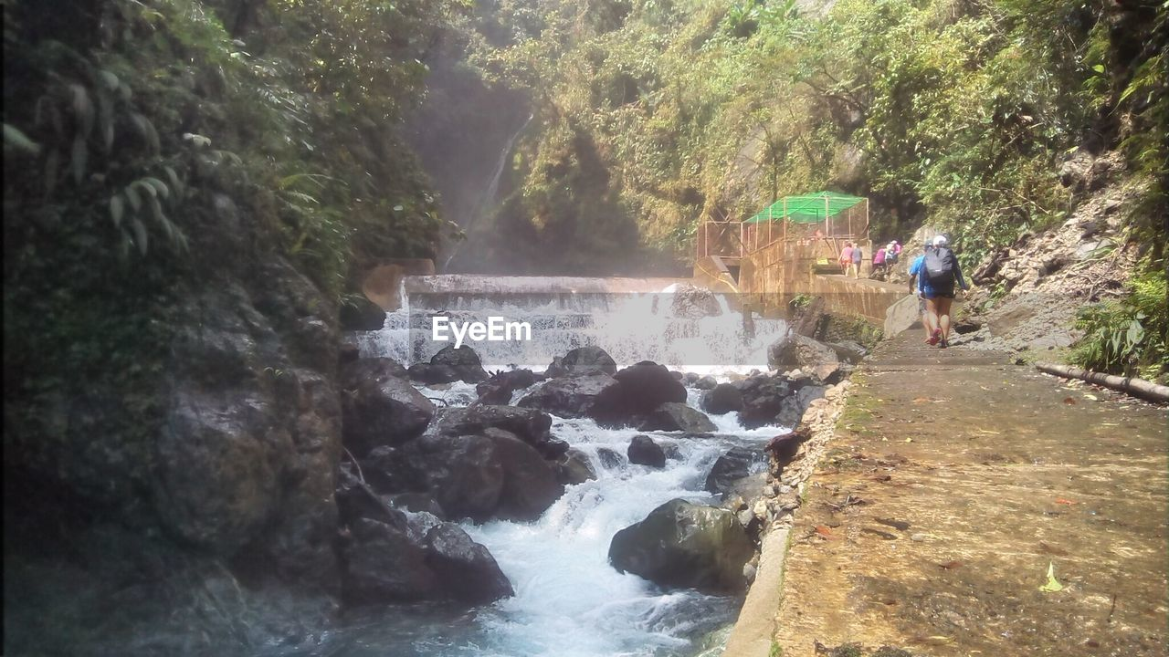 SCENIC VIEW OF WATERFALL AND FOREST