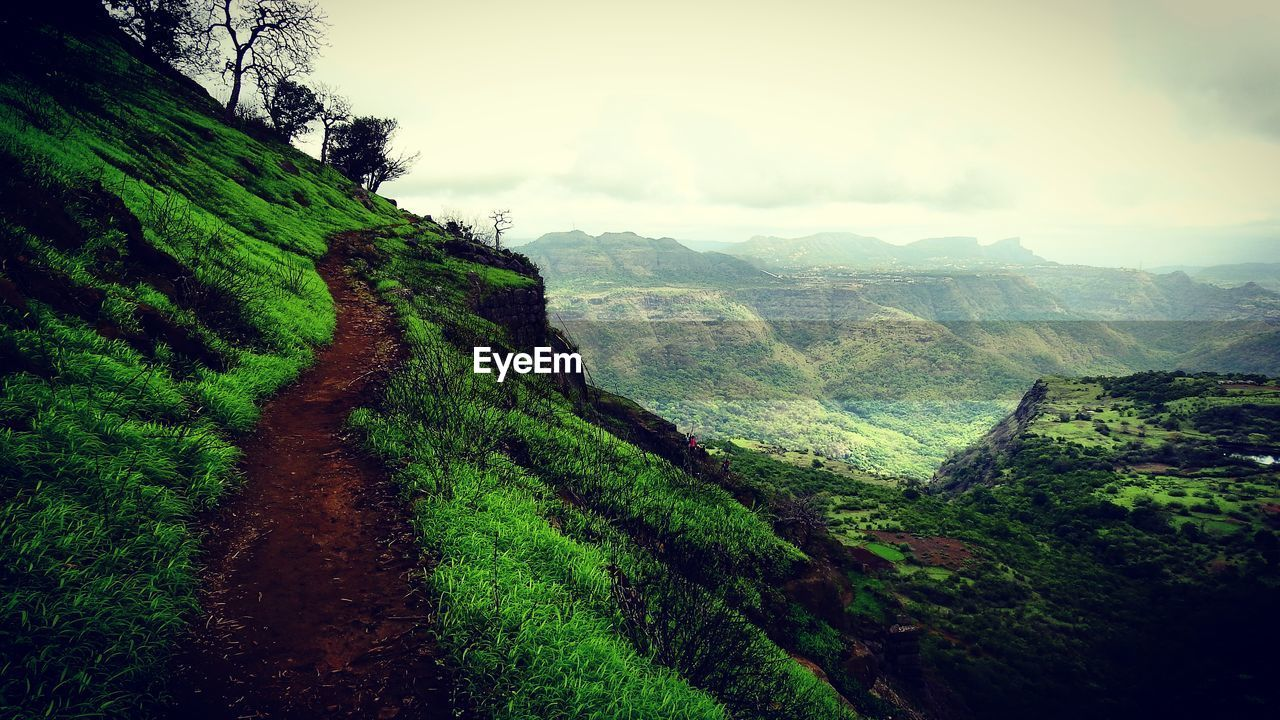 beauty in nature, mountain, nature, tranquil scene, tranquility, scenics, green color, landscape, no people, outdoors, day, winding road, sky, terraced field