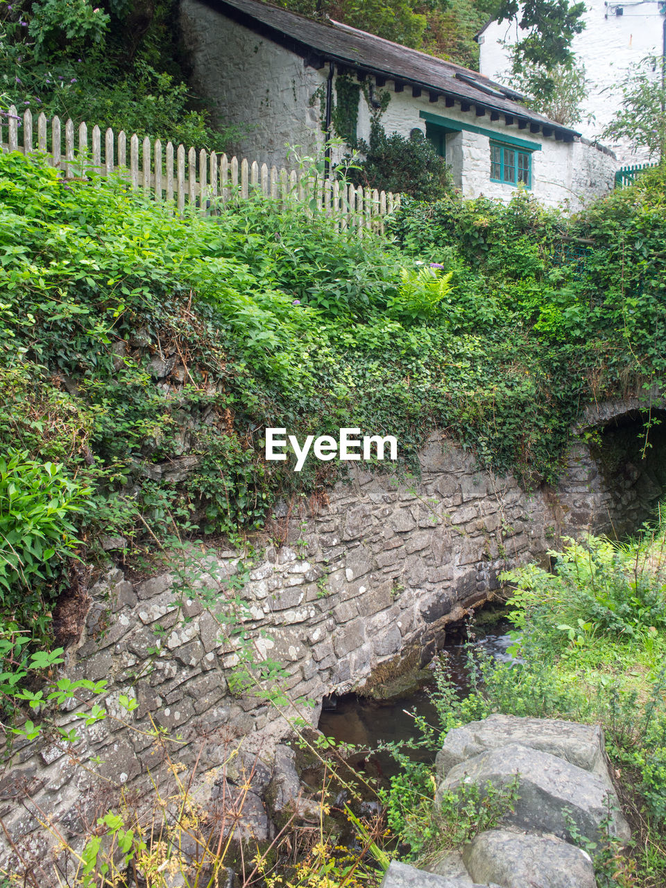architecture, built structure, plant, no people, building exterior, day, nature, tree, outdoors, building, green color, solid, bridge, growth, grass, house, barrier, fence, connection, old, stone wall