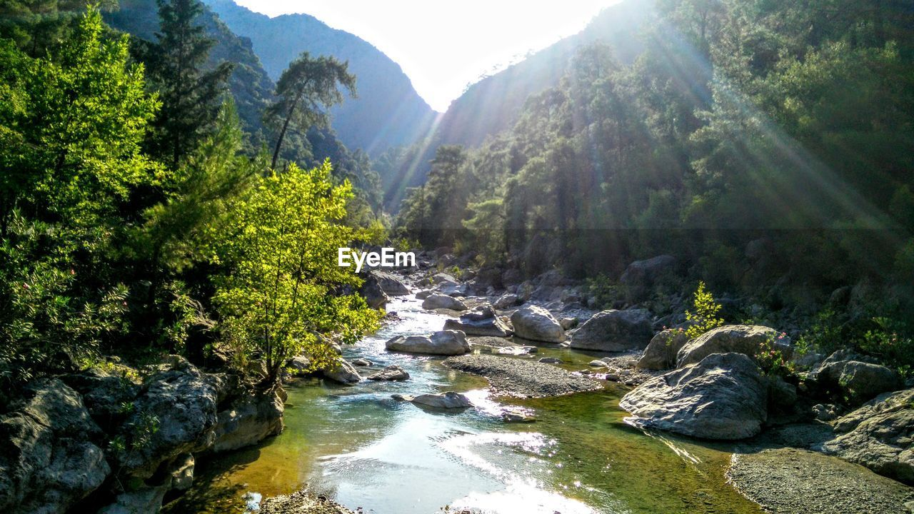 nature, mountain, rock - object, beauty in nature, tree, sunlight, tranquil scene, scenics, river, forest, day, no people, outdoors, tranquility, landscape, mountain range, waterfall, water, sky