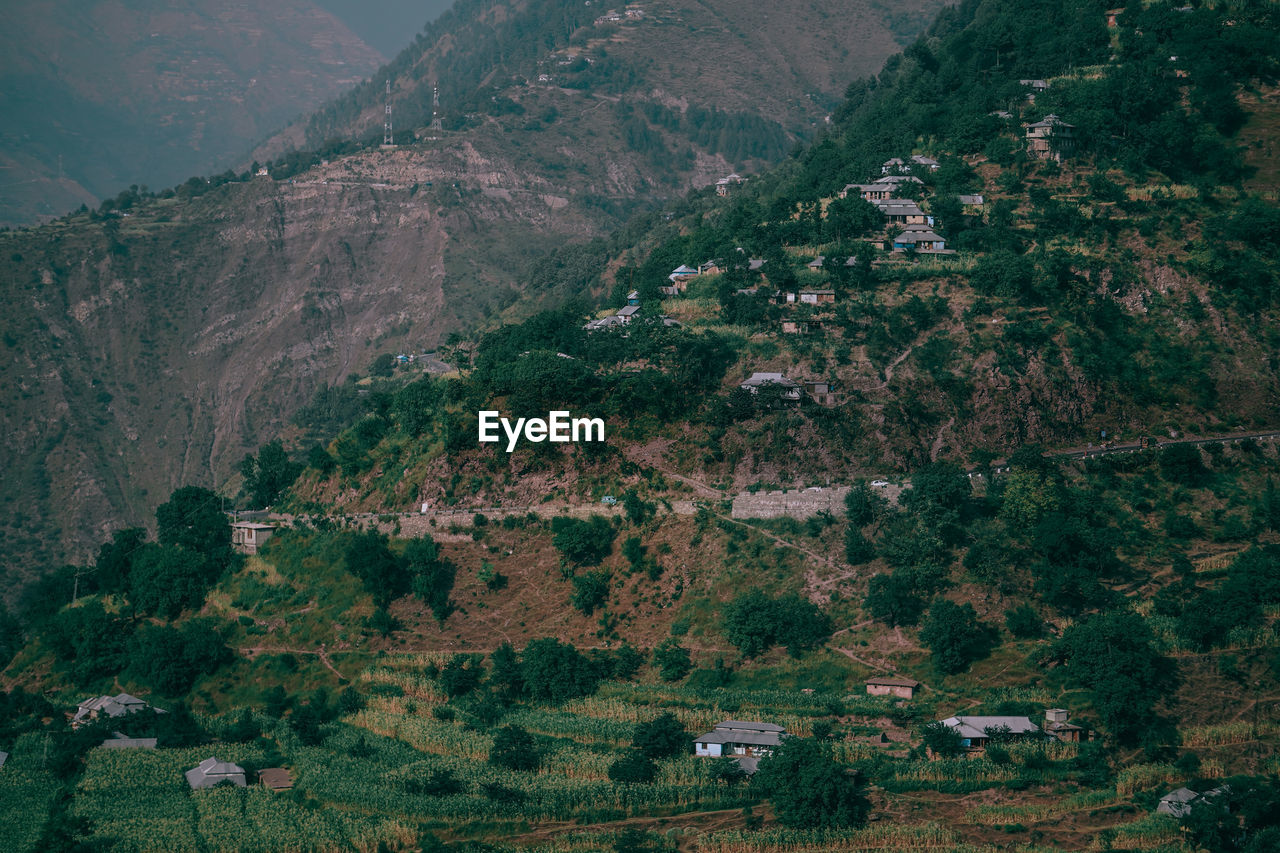 tree, mountain, environment, landscape, plant, land, no people, nature, scenics - nature, beauty in nature, outdoors, day, travel, exploration, high angle view, growth, tranquility, tranquil scene, architecture, building, mountain range, range, place, location