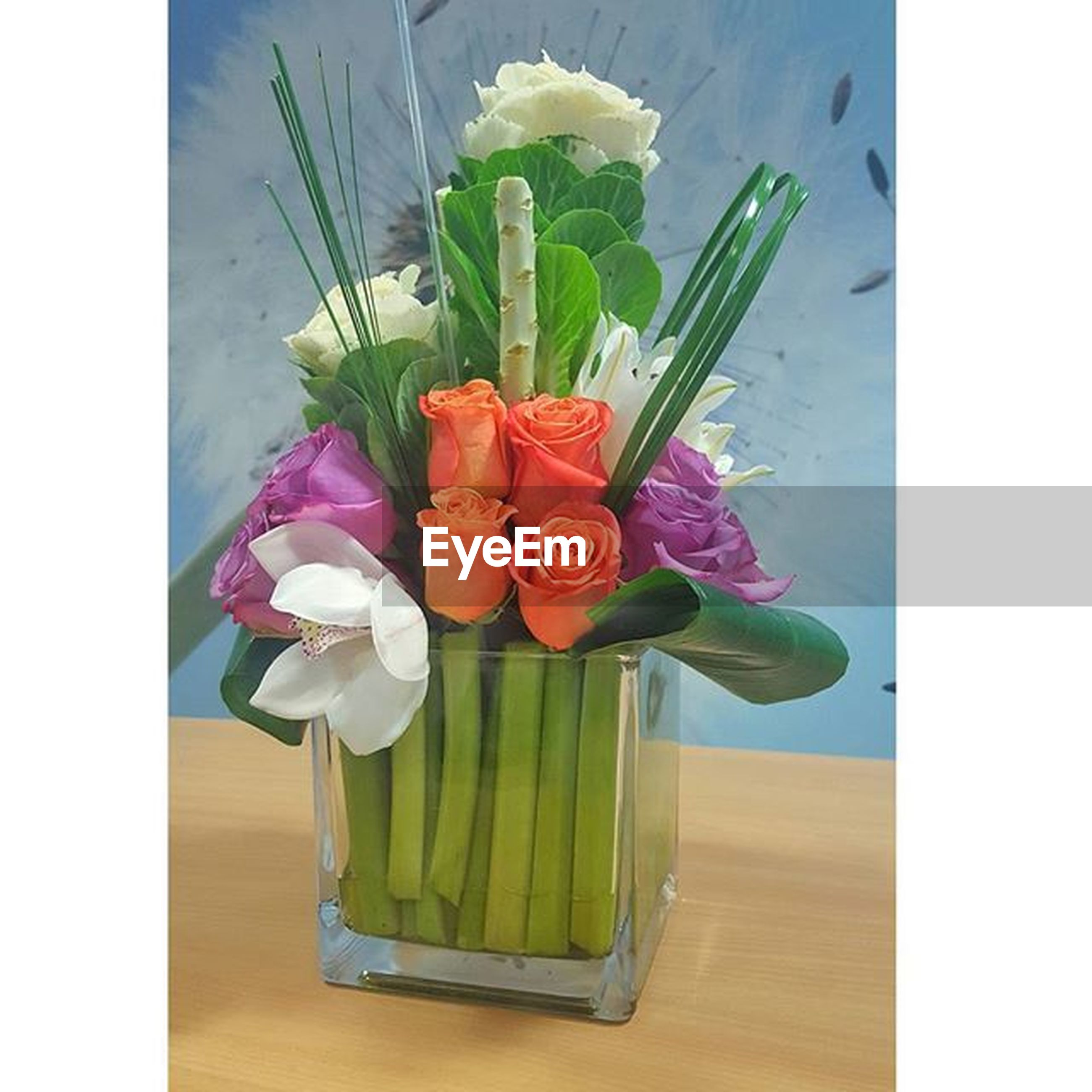 indoors, flower, table, vase, still life, freshness, transfer print, auto post production filter, petal, fragility, close-up, flower arrangement, flower head, home interior, variation, high angle view, no people, tulip, pink color, bouquet