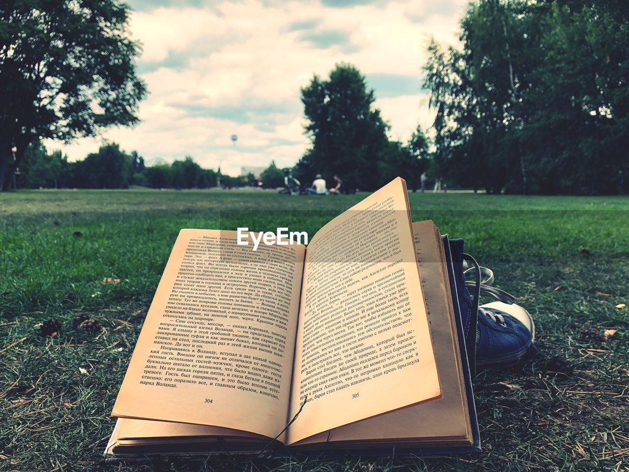 publication, book, grass, plant, field, nature, tree, land, paper, open, day, park, page, absence, sky, no people, focus on foreground, park - man made space, education, close-up, studying