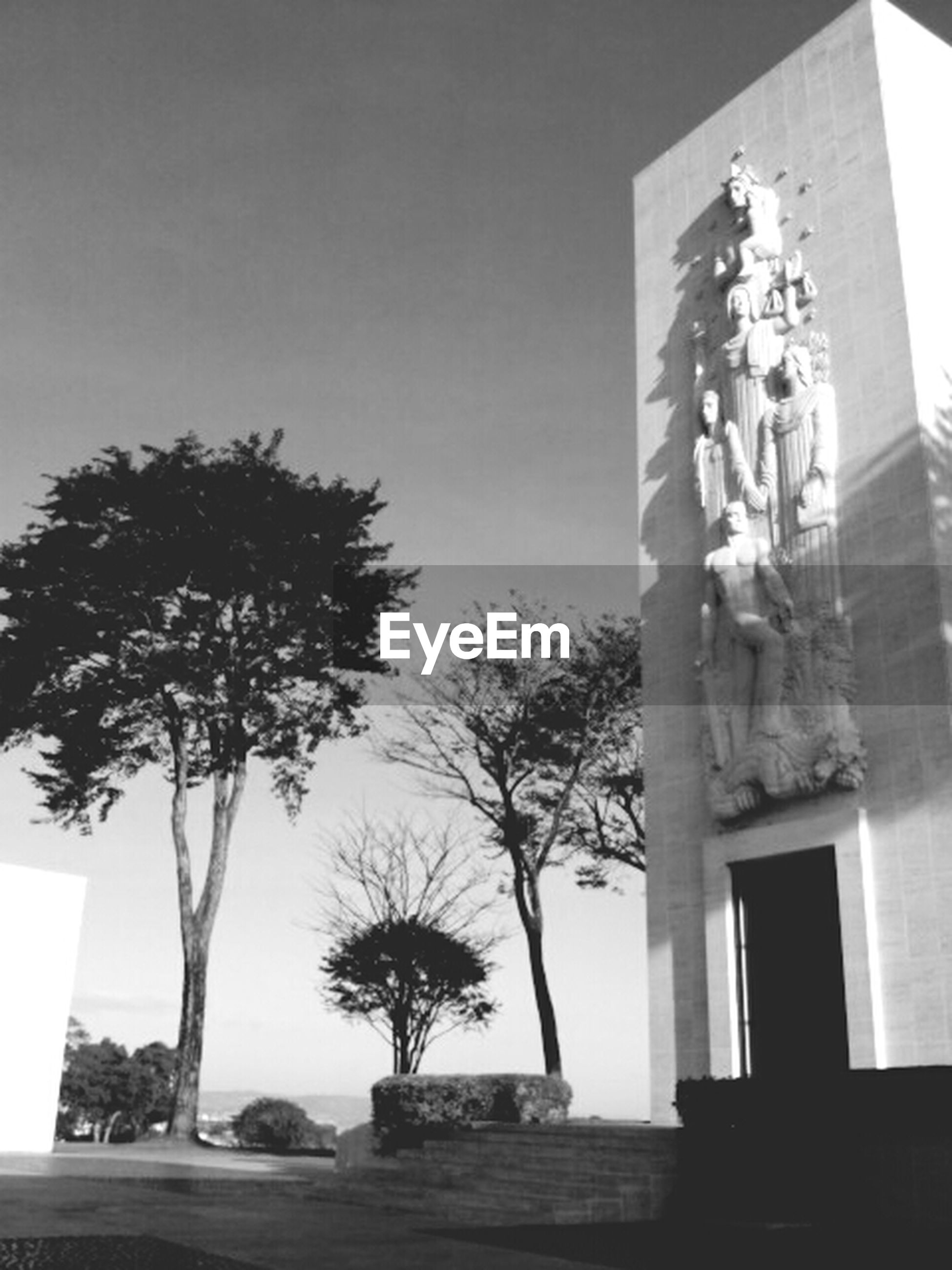 tree, architecture, built structure, building exterior, low angle view, clear sky, palm tree, sunlight, human representation, growth, day, sky, house, shadow, tree trunk, art and craft, no people, statue, window, sculpture