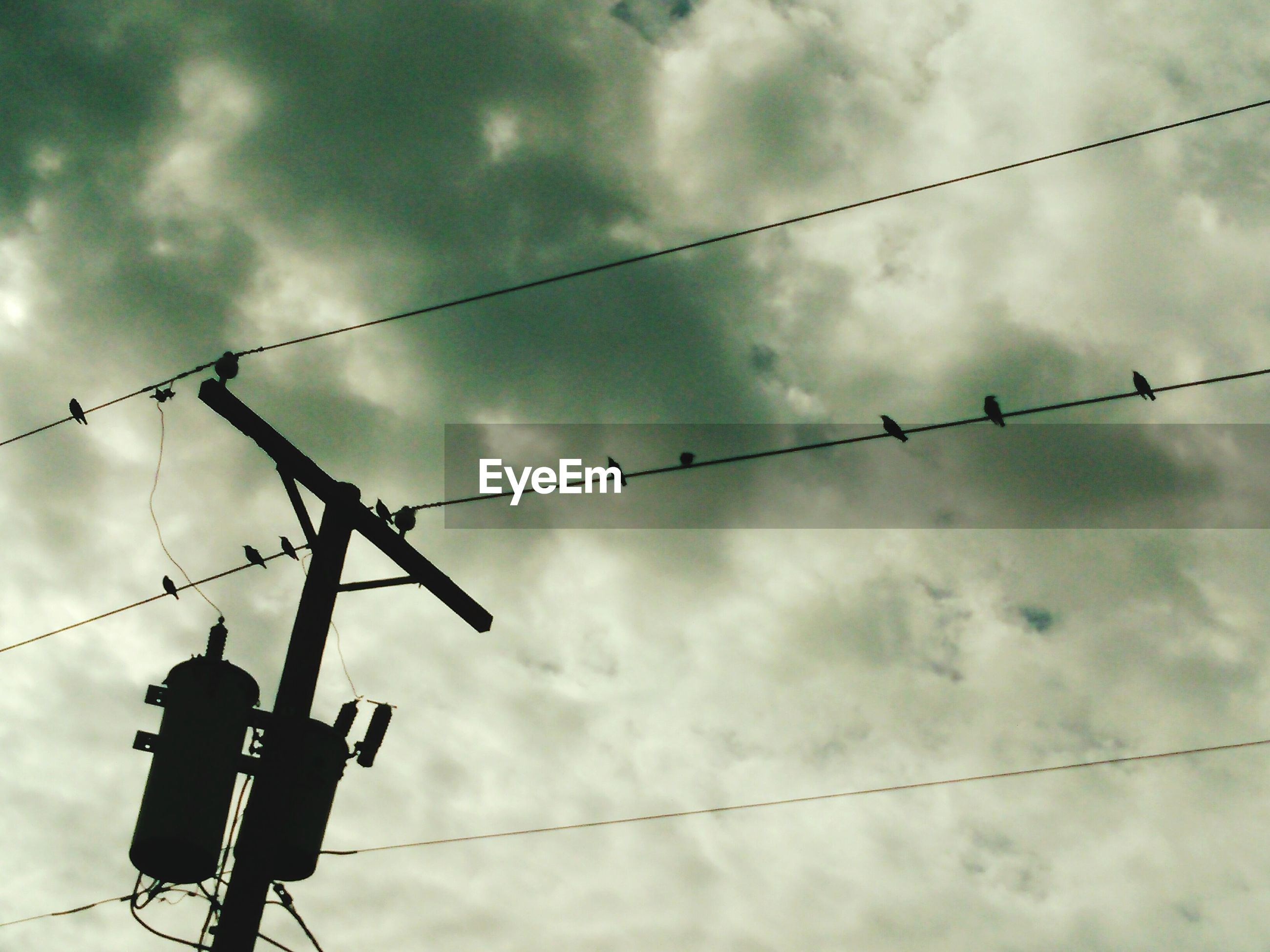 Low angle view of bird perching on silhouette electricity pylon against cloudy sky