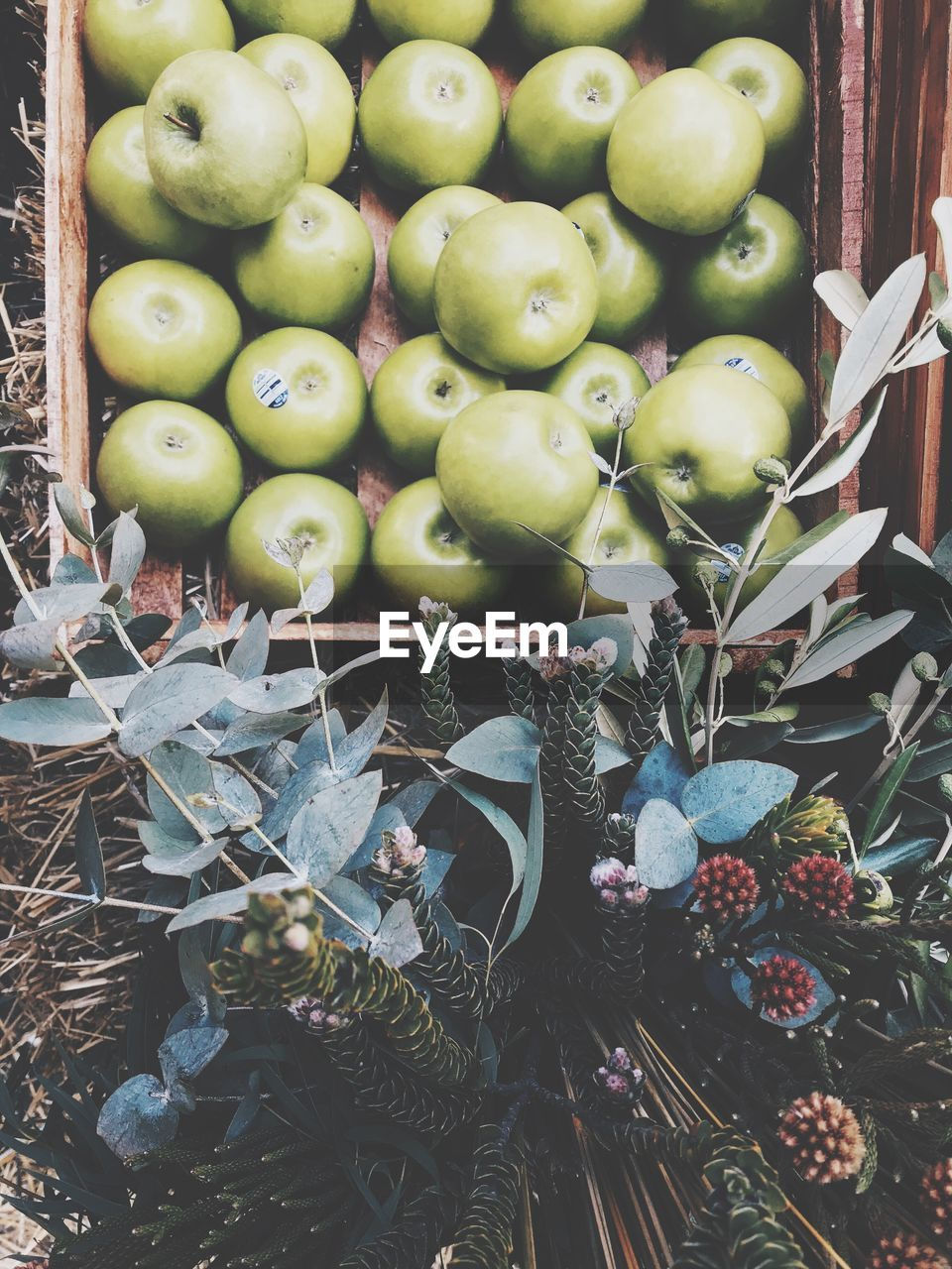 healthy eating, fruit, wellbeing, freshness, food and drink, food, large group of objects, no people, abundance, green color, day, close-up, apple - fruit, market, plant, high angle view, nature, outdoors, container, choice, apple, ripe