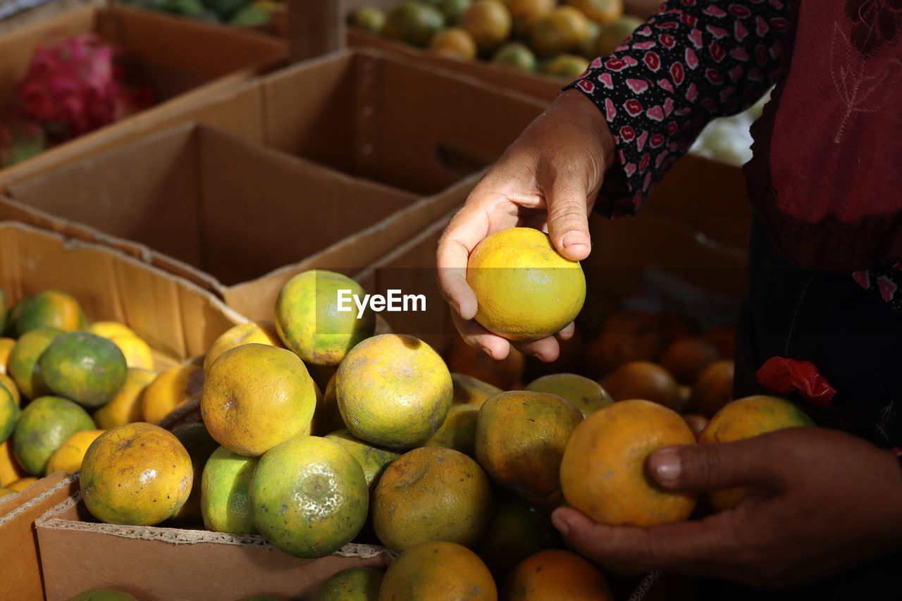 CROPPED IMAGE OF HAND HOLDING APPLES IN MARKET