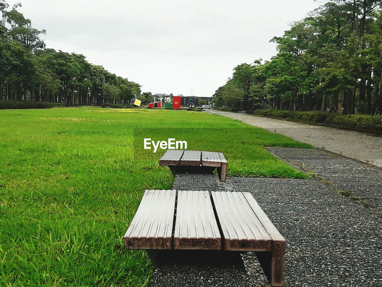 plant, green color, tree, grass, sky, nature, growth, land, day, field, architecture, no people, built structure, seat, outdoors, beauty in nature, empty, wood - material, bench, absence