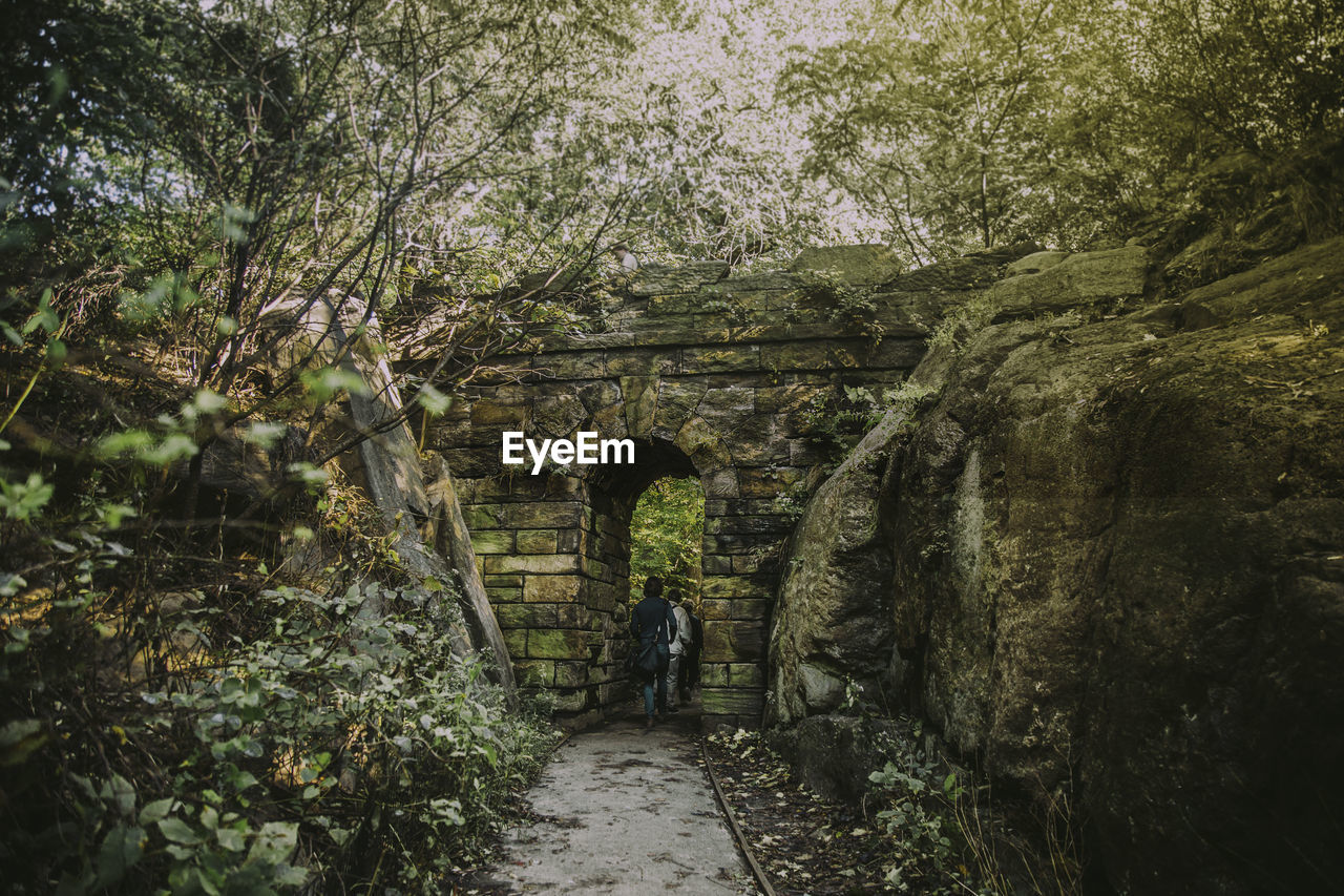 architecture, tree, direction, plant, the way forward, arch, full length, built structure, footpath, day, nature, walking, real people, one person, history, the past, growth, forest, land, outdoors, stone wall
