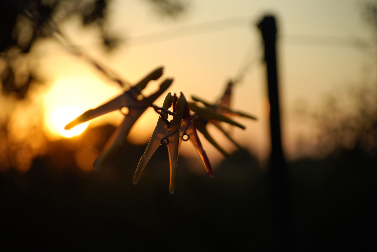 sunset, close-up, no people, silhouette, focus on foreground, nature, selective focus, sky, outdoors, beauty in nature, plant, tree, field, orange color, land, metal, tranquility, hanging, security, sun