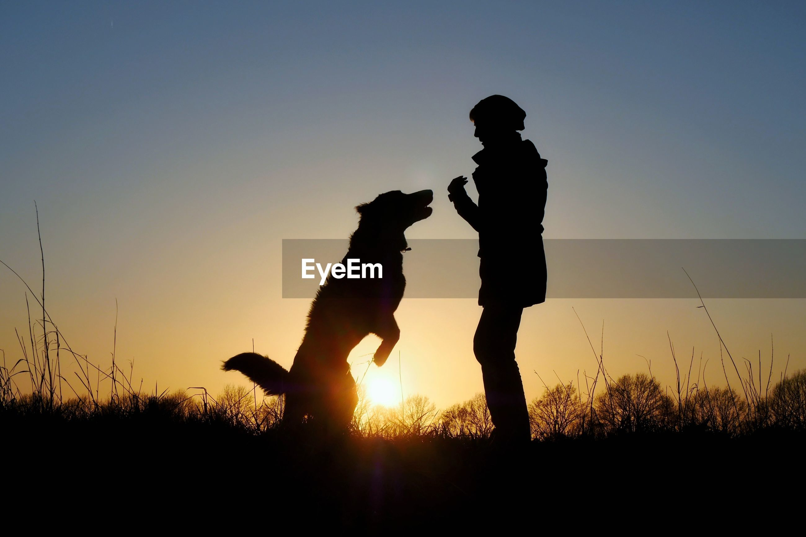 Silhouette of woman and dog on field against sky during sunset