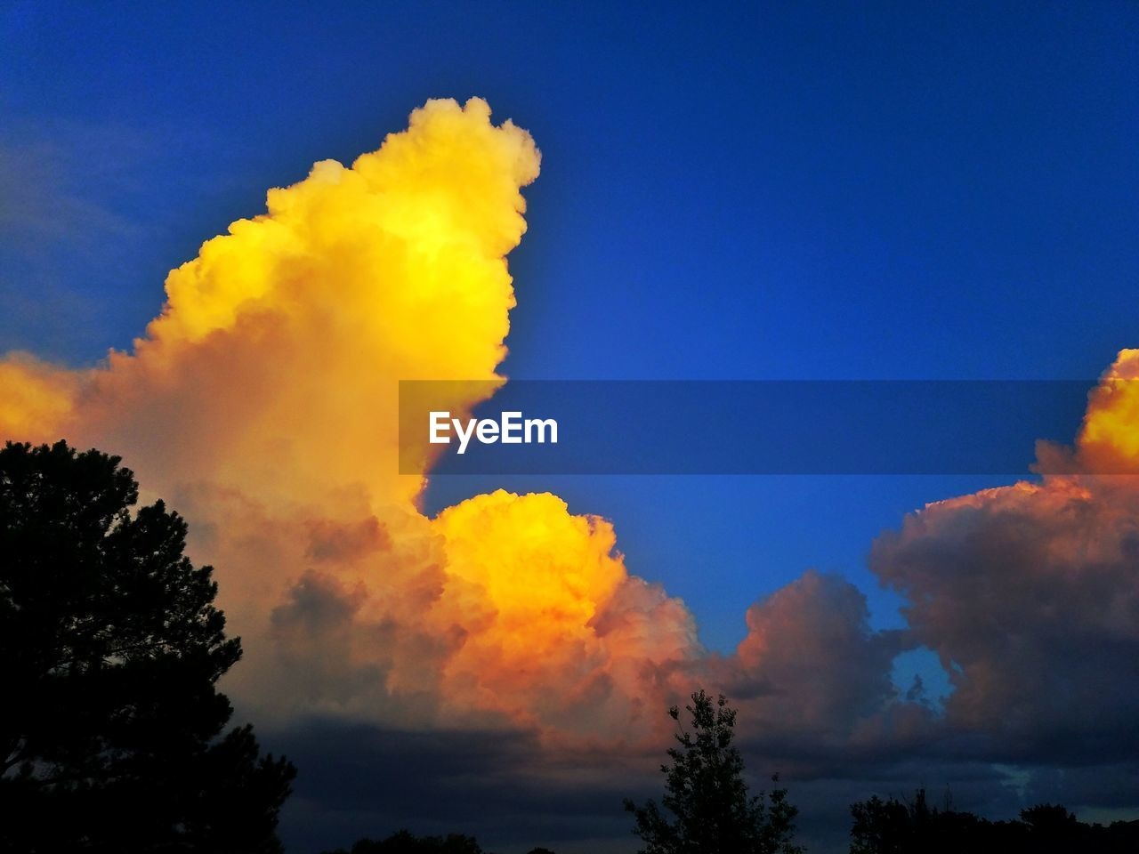 nature, sky, beauty in nature, low angle view, scenics, no people, tranquility, tree, cloud - sky, blue, tranquil scene, outdoors, silhouette, sunset, yellow, day, multi colored