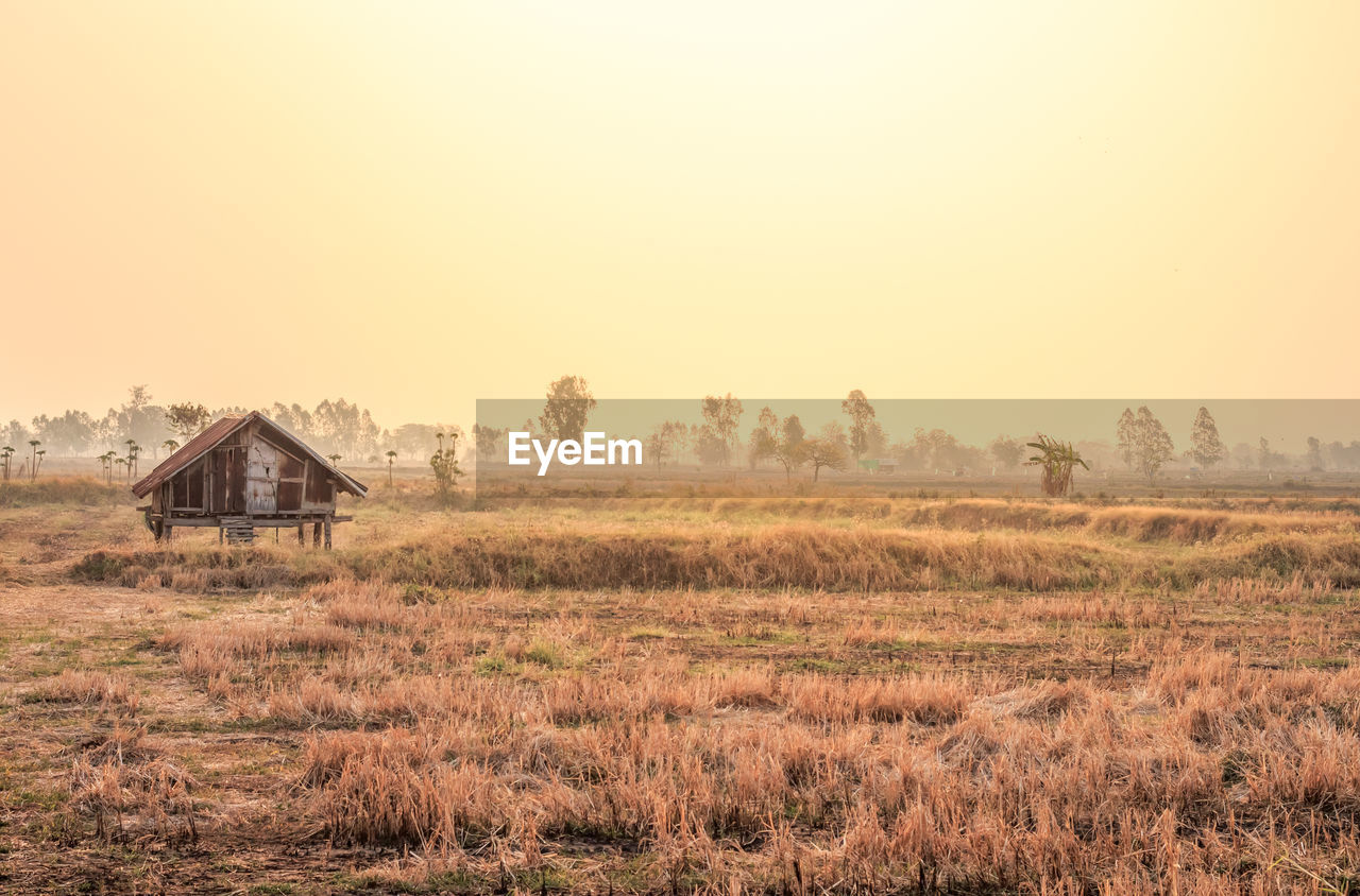 field, sky, landscape, copy space, land, building exterior, architecture, built structure, no people, nature, clear sky, environment, scenics - nature, farm, house, agricultural building, plant, tranquility, grass, day, outdoors, deterioration, ruined