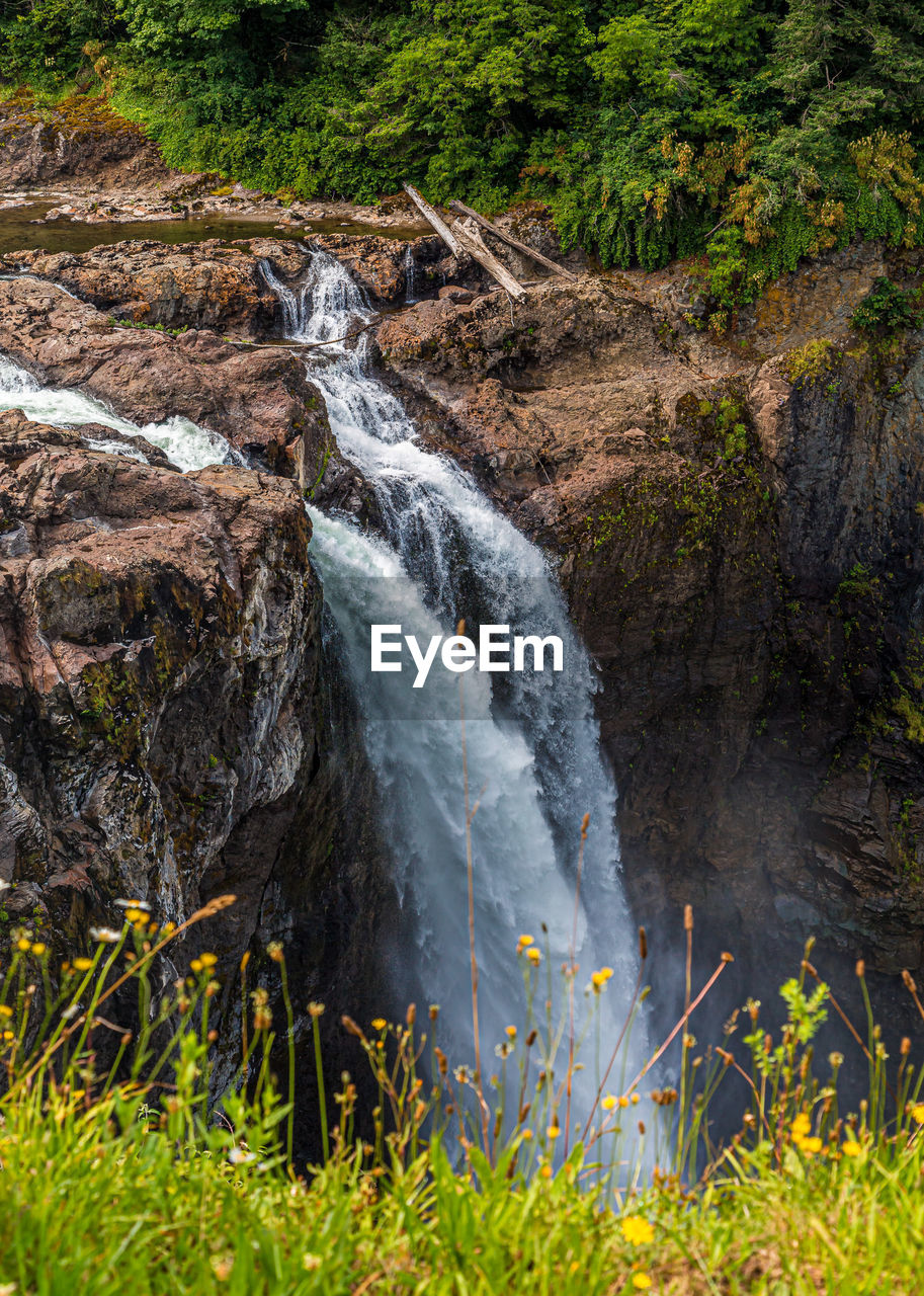 water, plant, motion, forest, nature, land, no people, tree, scenics - nature, waterfall, beauty in nature, grass, environment, rock, flowing water, day, long exposure, non-urban scene, outdoors, stream - flowing water, flowing, power in nature, purity