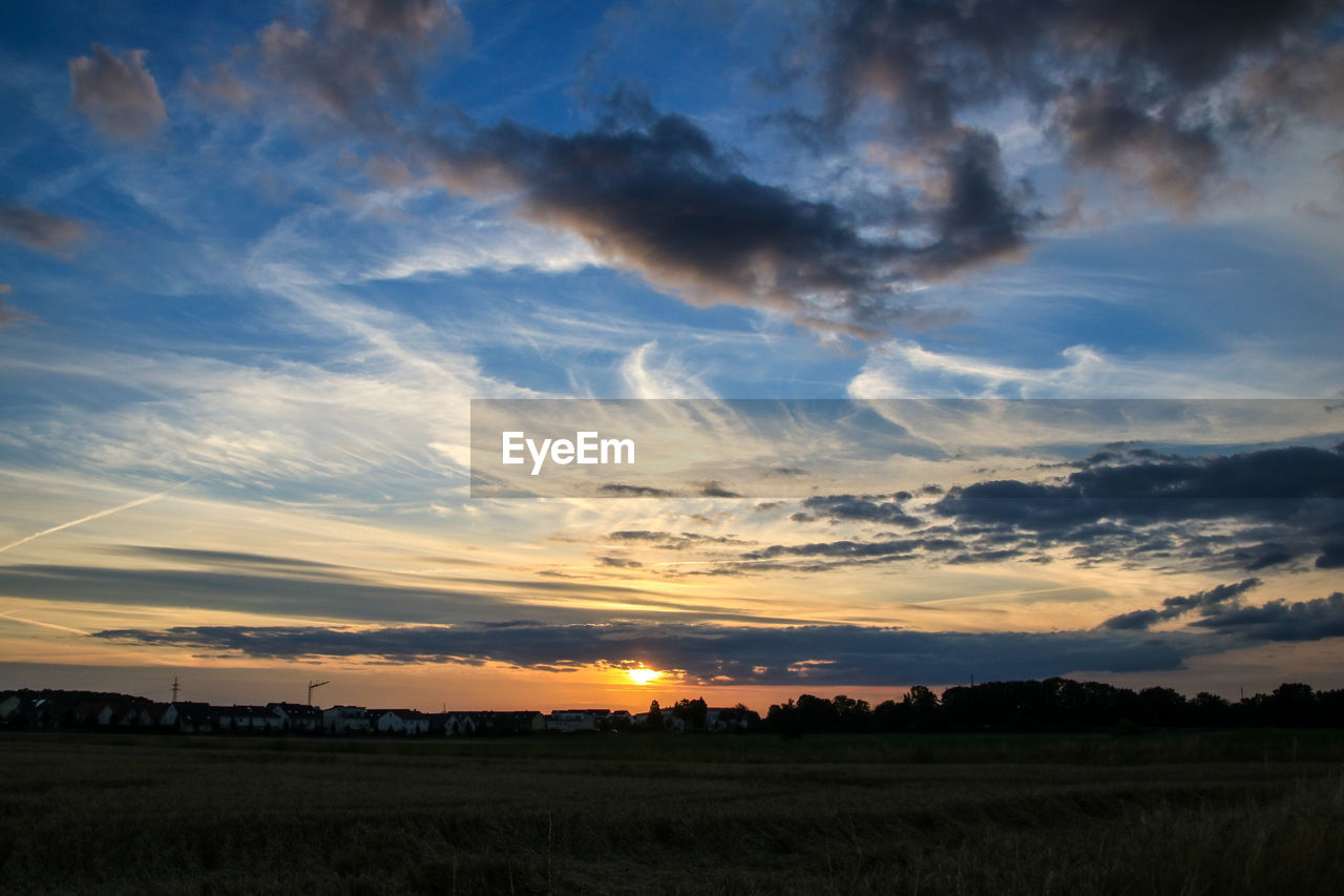 sunset, field, nature, landscape, beauty in nature, scenics, tranquility, tranquil scene, sky, cloud - sky, agriculture, rural scene, no people, outdoors, growth, tree, grass, day