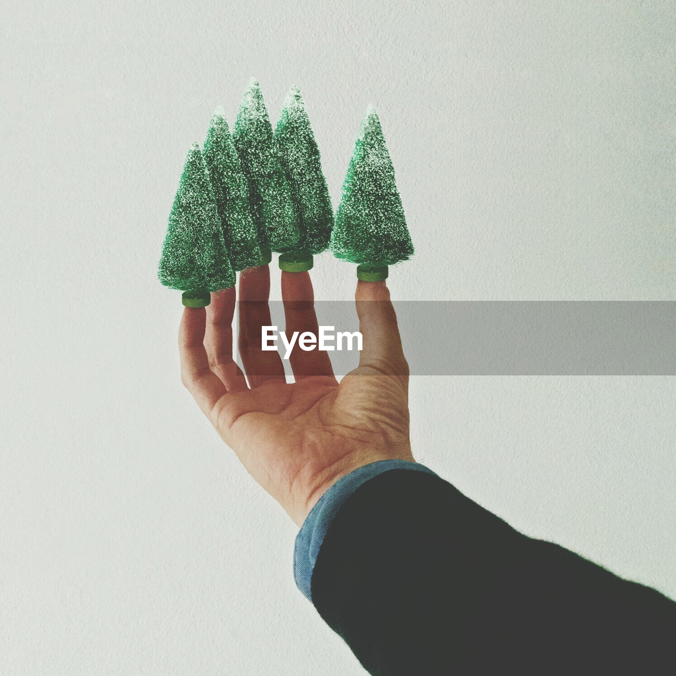 Close-up of christmas trees on fingertips over white background