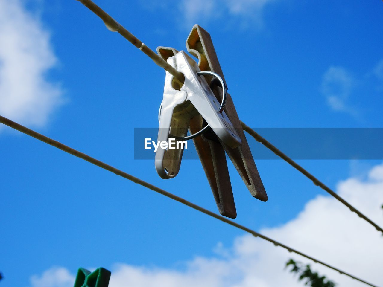low angle view, sky, clothespin, clothesline, no people, hanging, nature, blue, day, rope, focus on foreground, cloud - sky, laundry, clothing, sunlight, outdoors, close-up, plant, shoe, metal, directly below