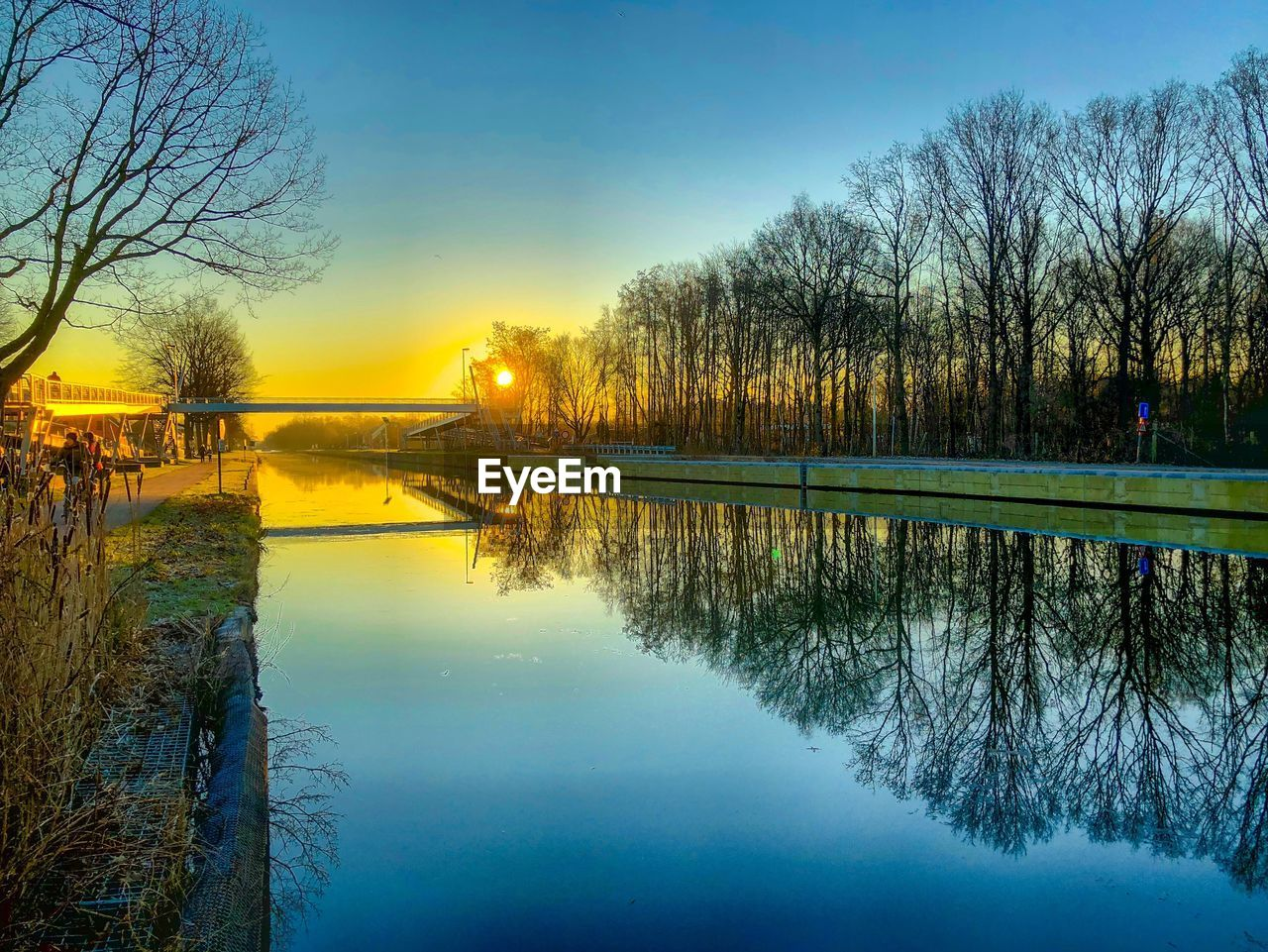 reflection, water, tree, sky, plant, lake, tranquility, scenics - nature, sunset, beauty in nature, nature, tranquil scene, bare tree, waterfront, no people, outdoors, standing water, symmetry, idyllic